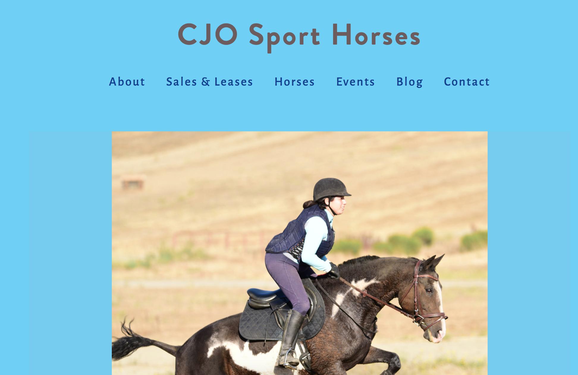 Carolyn Orndoff, Owner, CJO Sport Horses