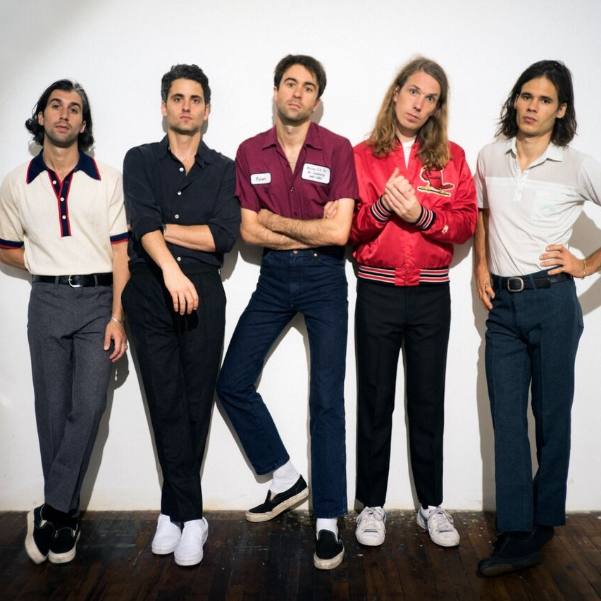 THE VACCINES -