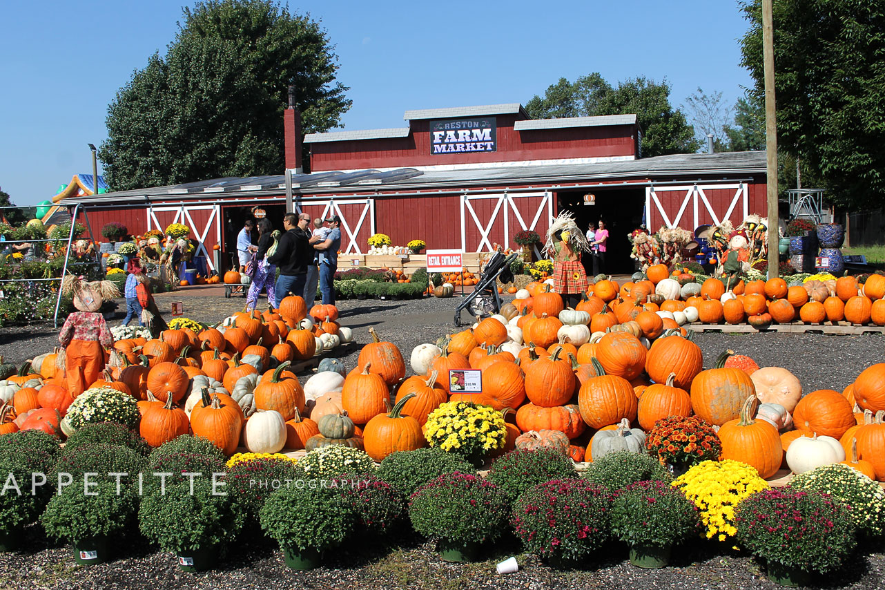 Fall-Festival-Reston-Farm-Market-VA-013.jpg