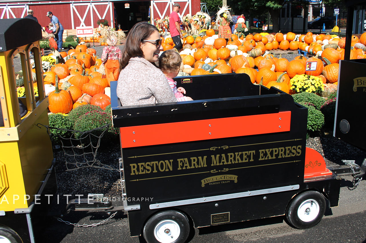 Fall-Festival-Reston-Farm-Market-VA-016.jpg