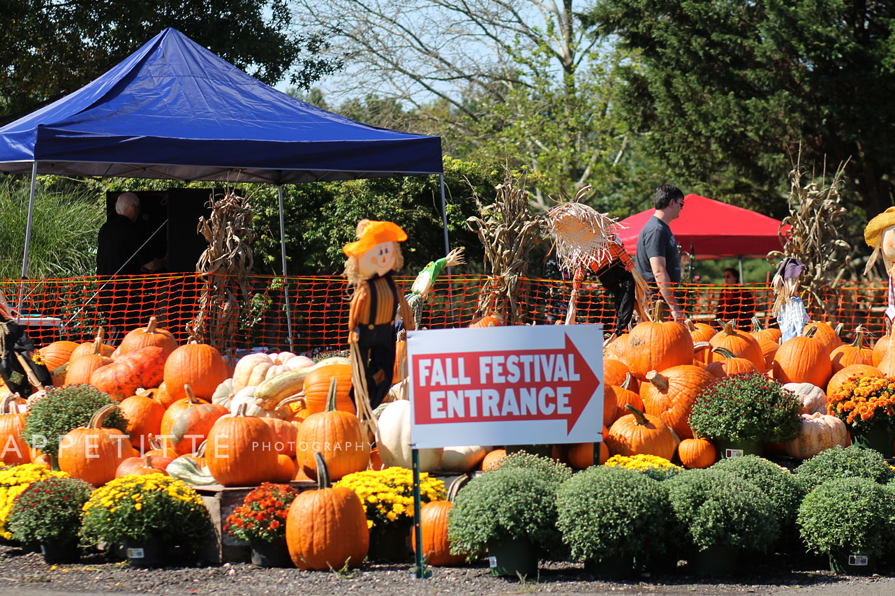 Fall-Festival-Reston-Farm-Market-VA-077.jpg