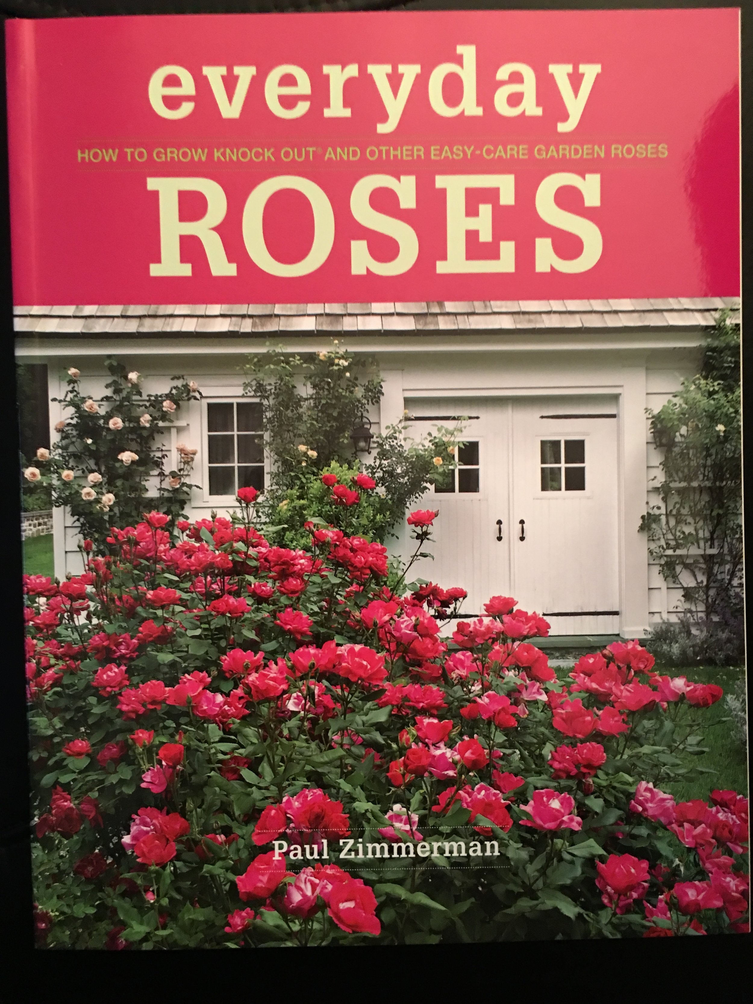 Everyday Roses - How to grow knock out and other easy-care garden roses