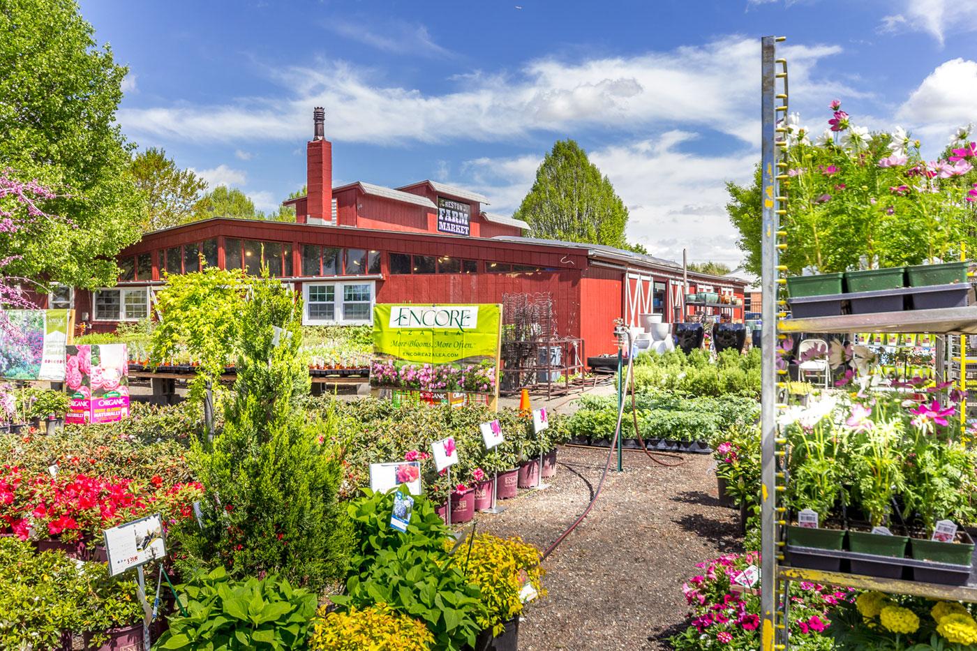 RFM-Spring-Season-2019-Garden-Center (18).jpg