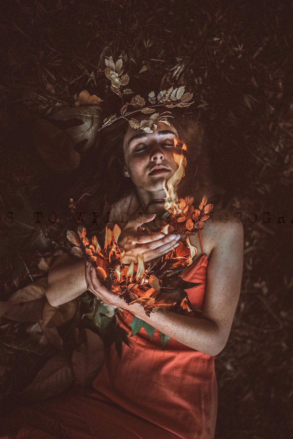 Roots_to_Willows_Photography_burn.jpg