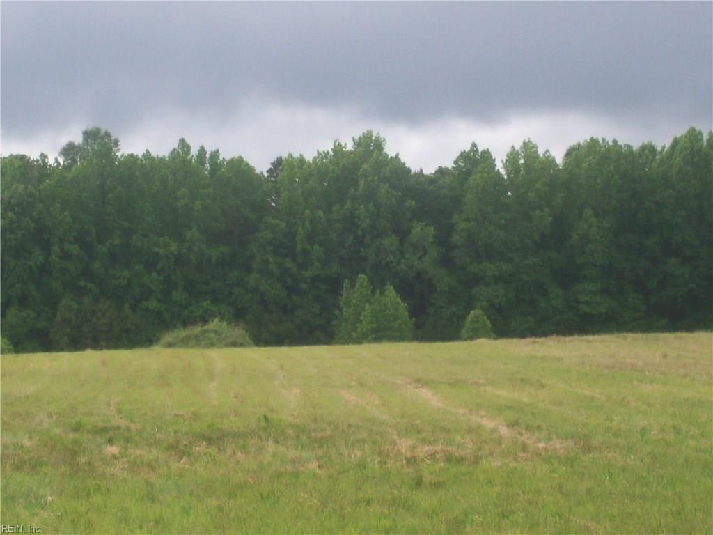 5+ ACRES FREEMAN MILL RD. -