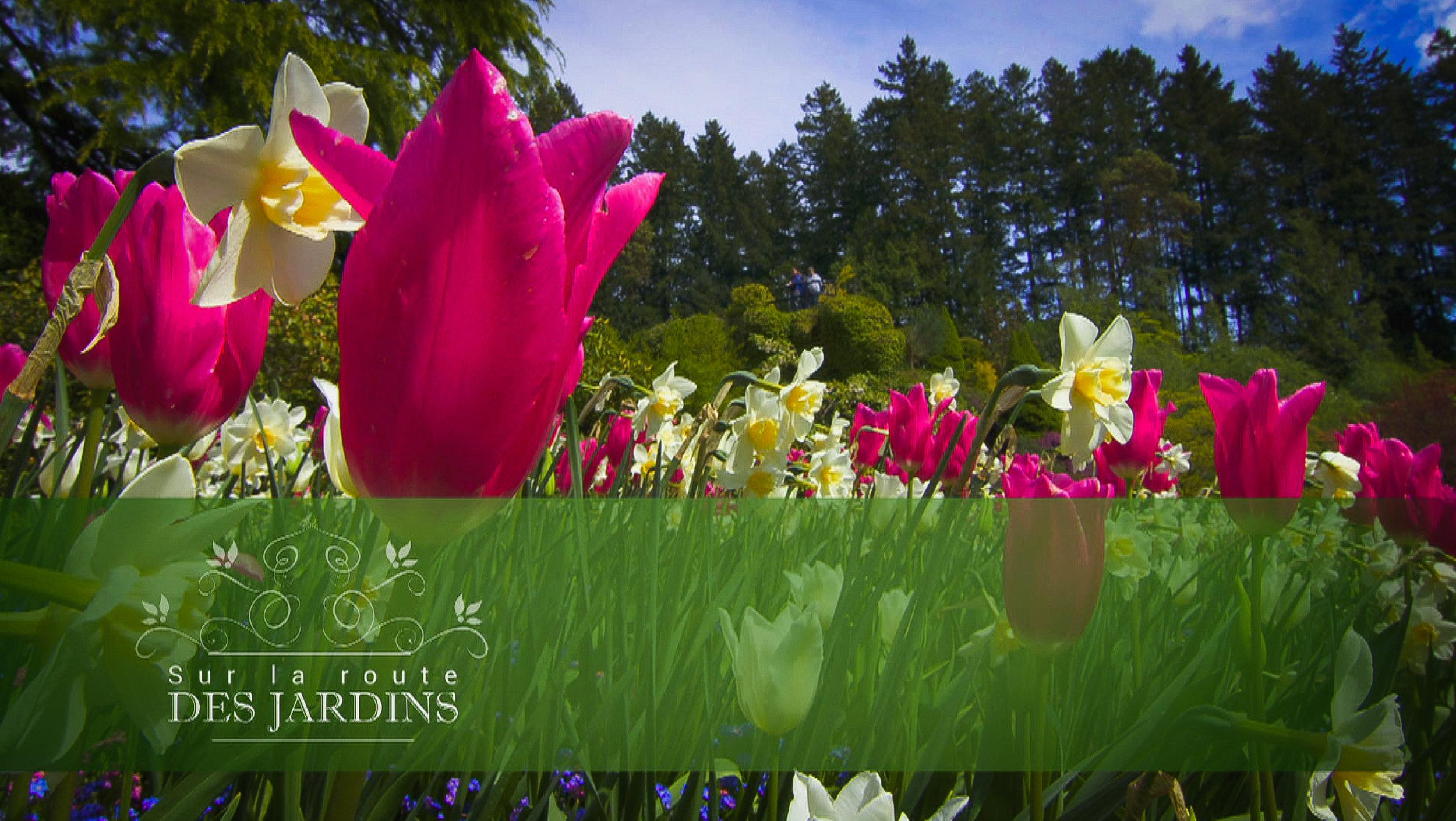 Jardins Screen shots-8.jpg