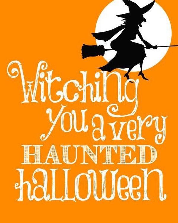 Happy Halloween! Time to get spoooky! 👻🎃🚲🕸