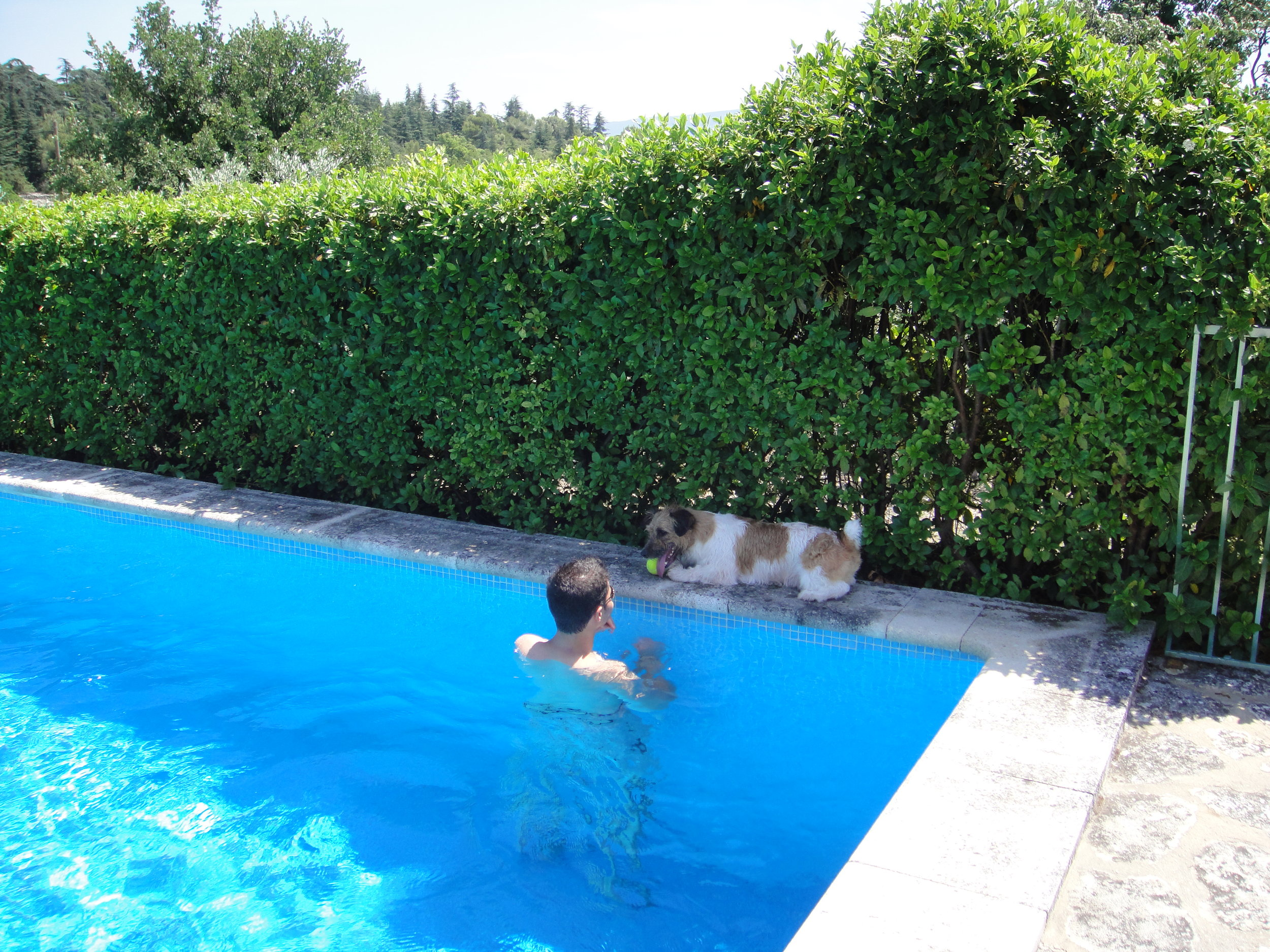 Enrique loved the swimming pool.