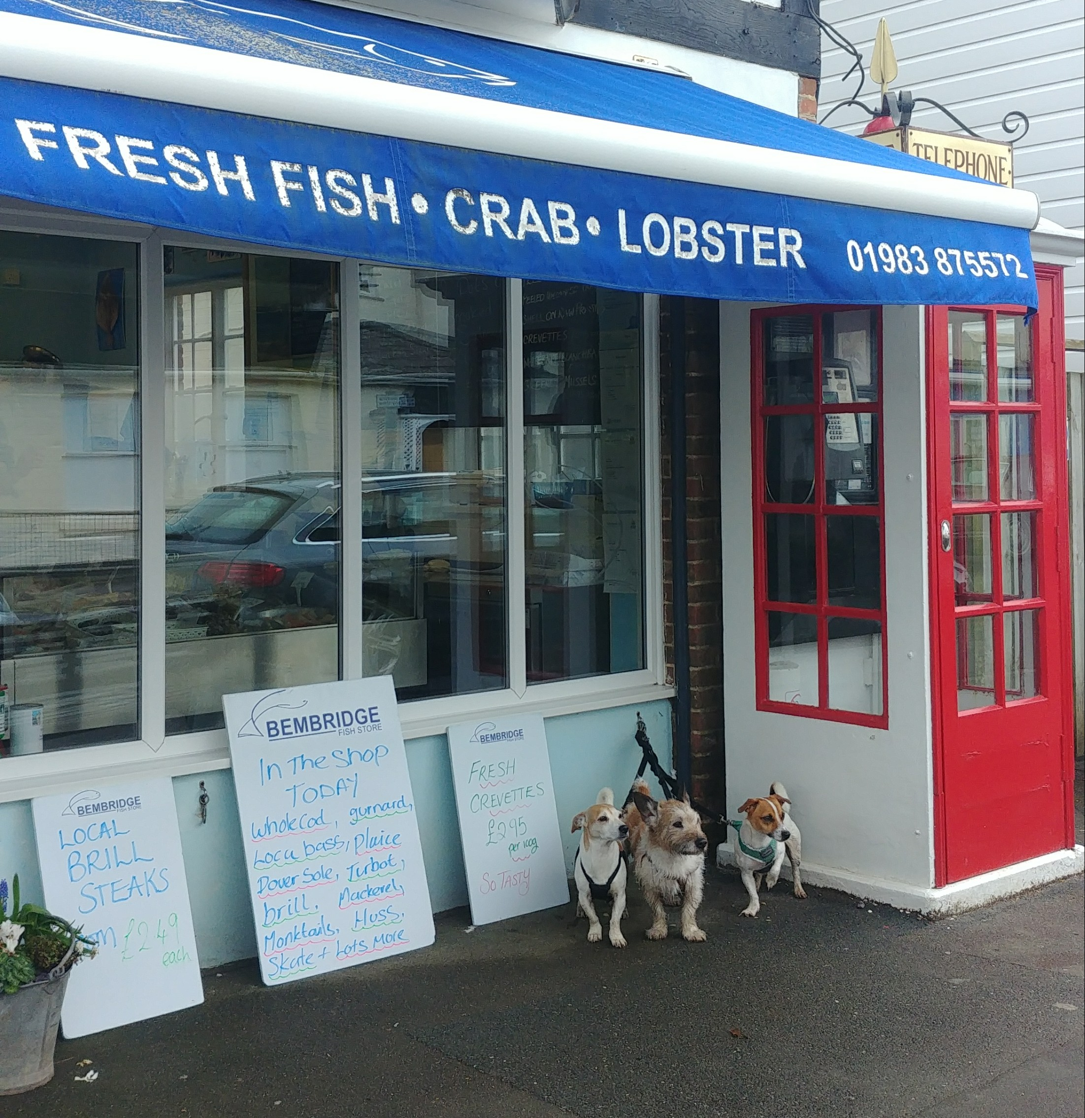 The fishmonger in Bembridge. Top tip - they sell delicious frozen homecooked fish dishes such as haddock chowder and Catalan fish stew, which are brilliant for when you can't be bothered to cook but don't want to eat out.