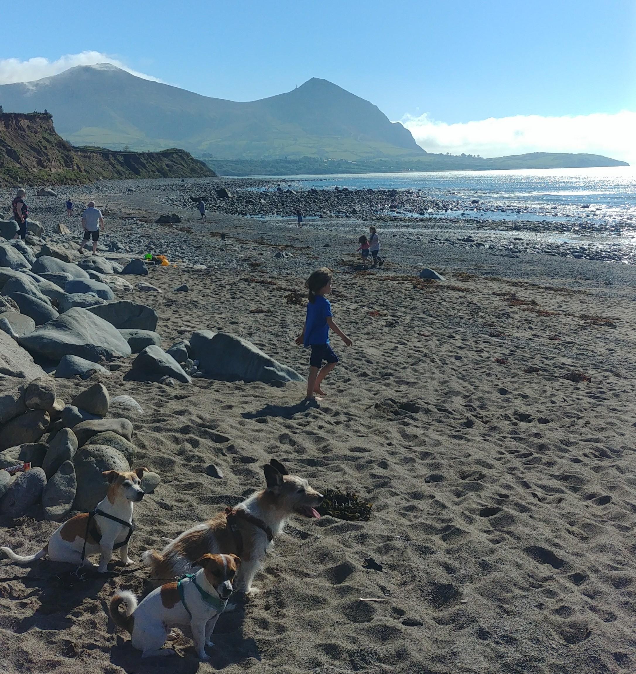 STN-Aberafon-Beach-2