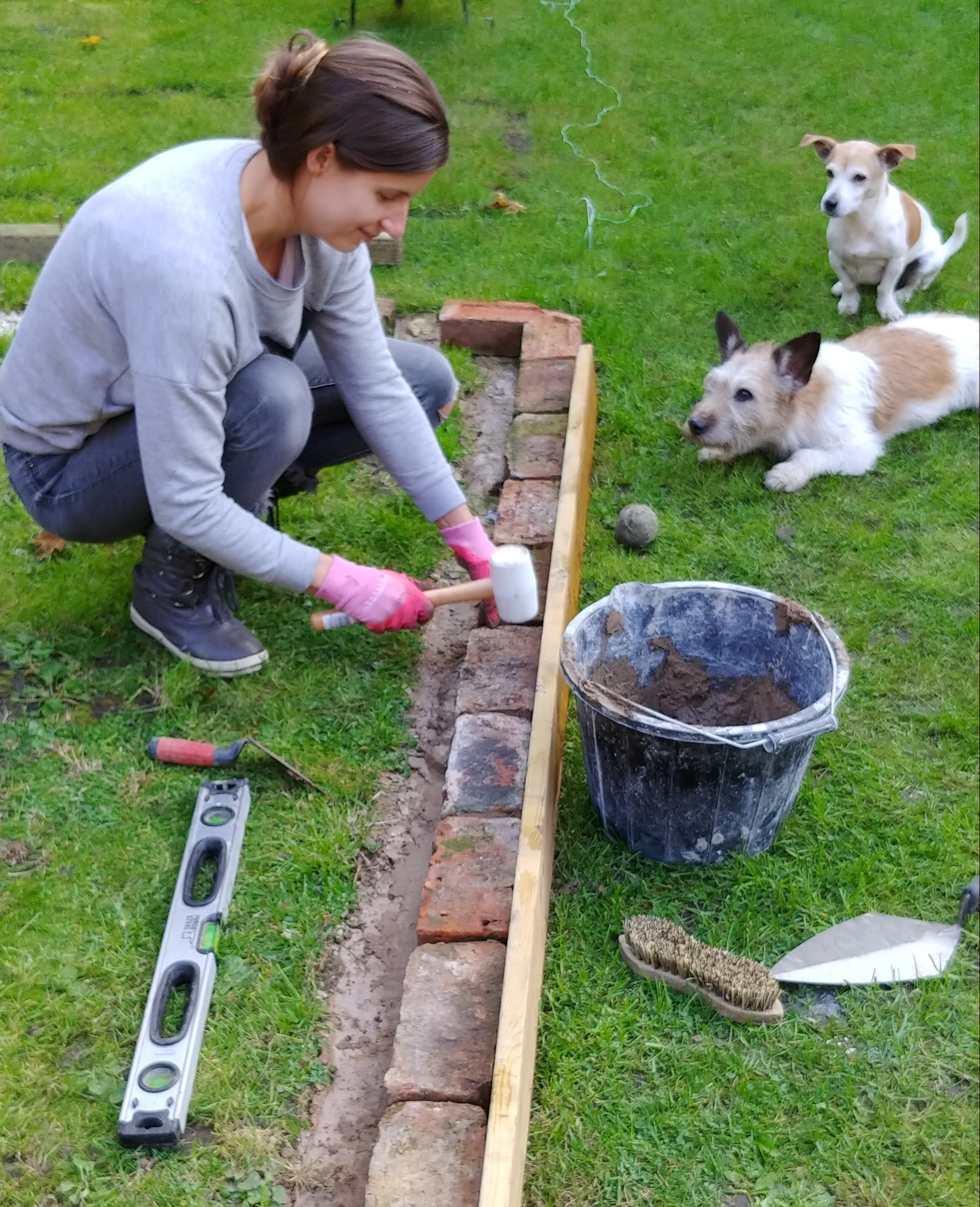 We used decking boards to keep the bricks in a straight line while we set them in place. Also, spot the filthy tennis ball, and the eager ball chasers.