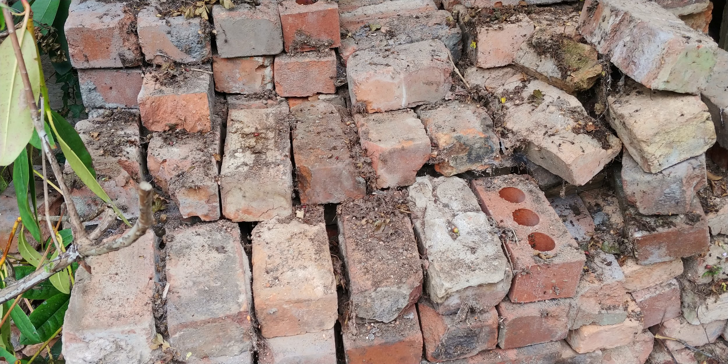 Close up of a typical brick pile. I don't even want to tell you how many massive spiders were lurking in here.