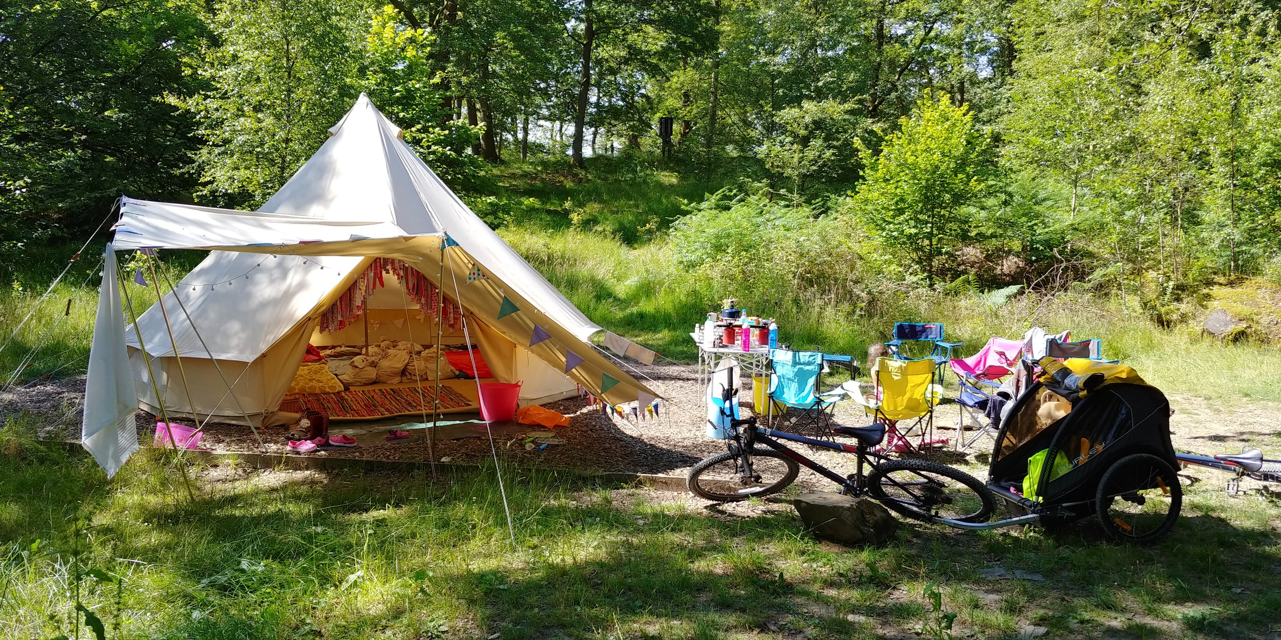 Pitch 203, a large woodland pitch.