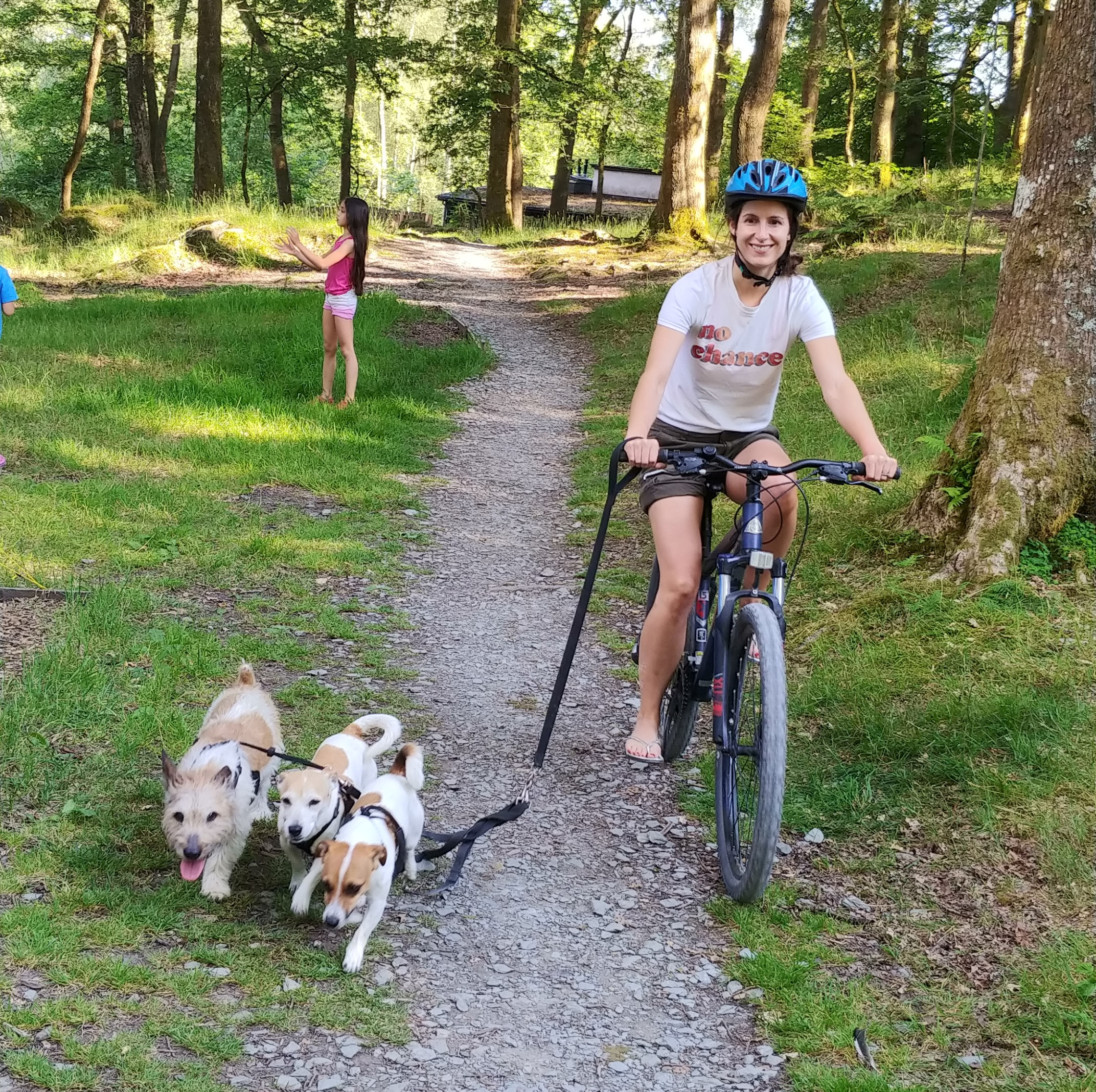 My own personal furry tripwires.