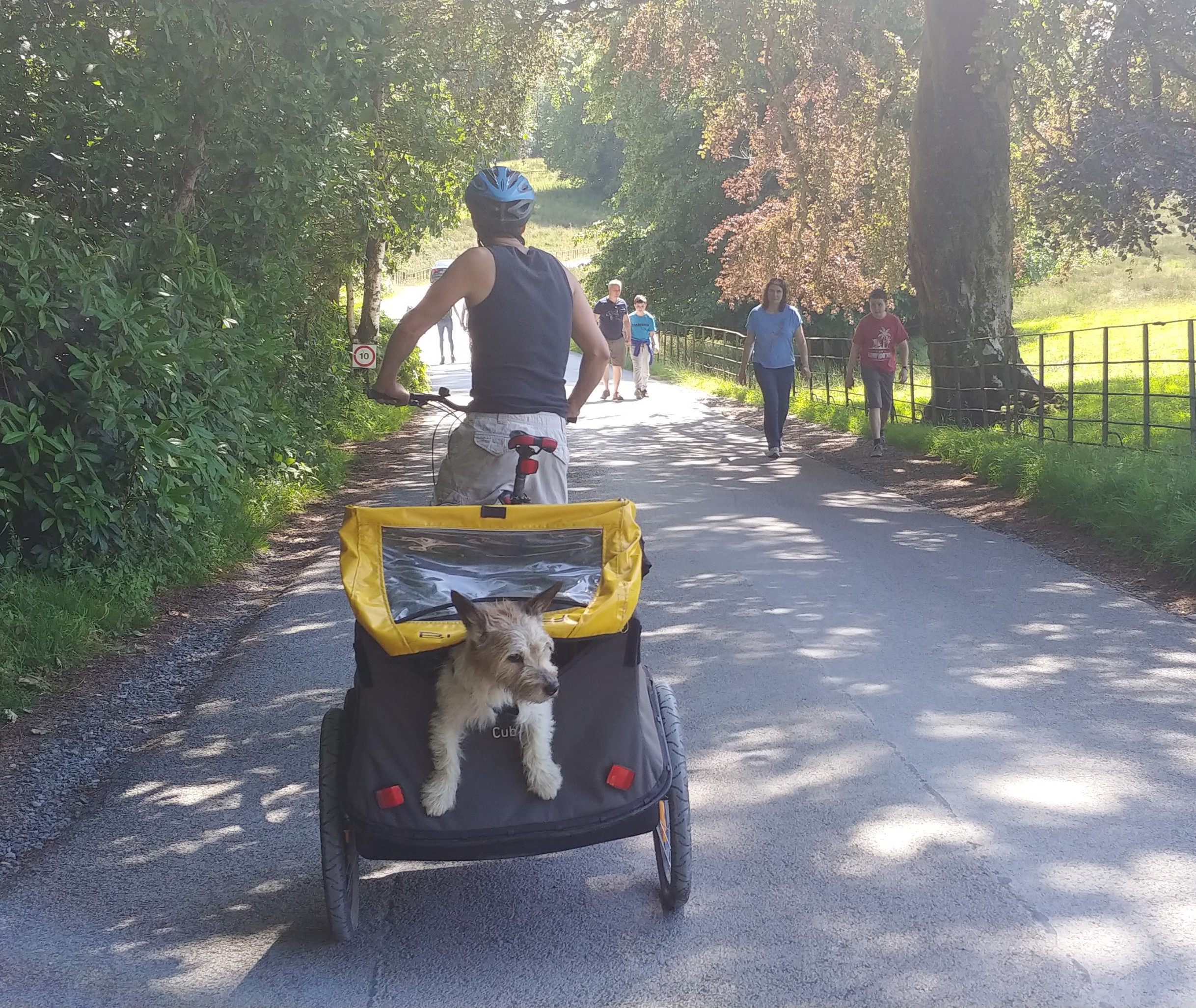 My darling big furry.