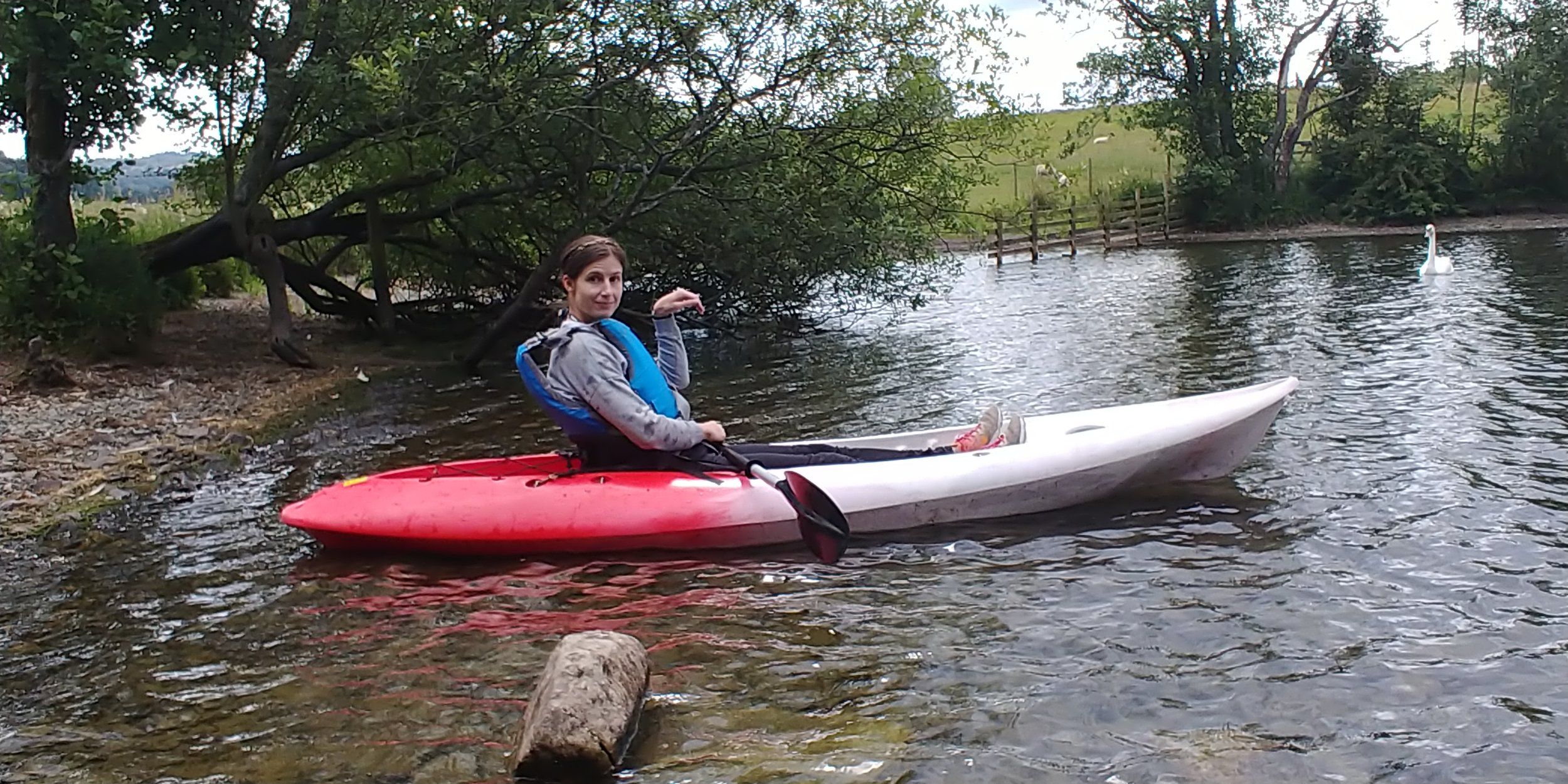 I think I'm pretending to be a swan here.