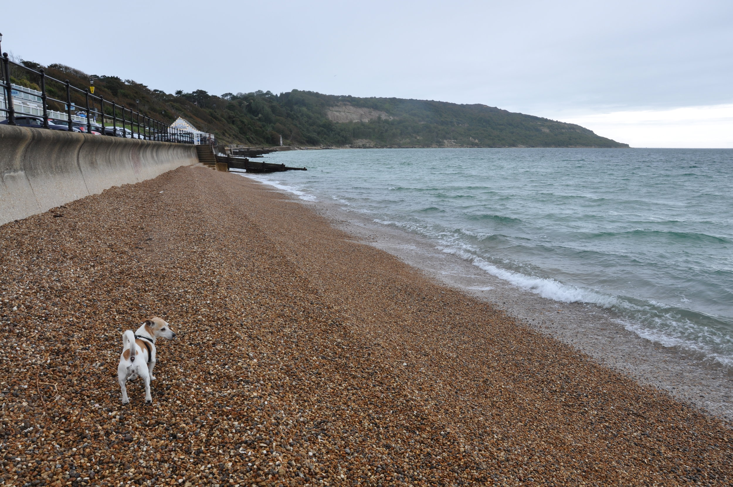 My lovely old lady braving the elements at Totland Bay.