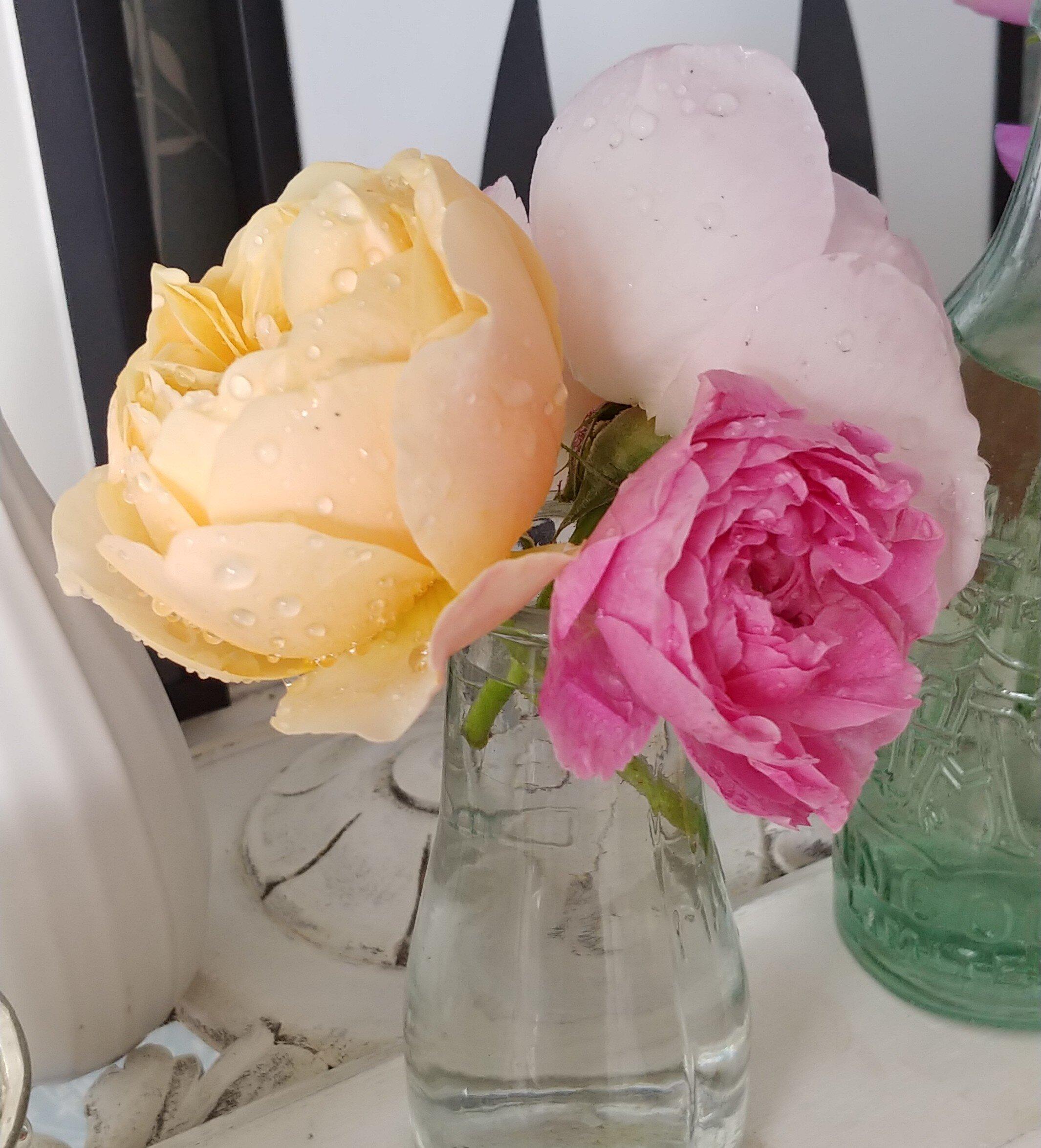 STN-Raised-Beds-Cut-Flower-Garden-Mantelpiece