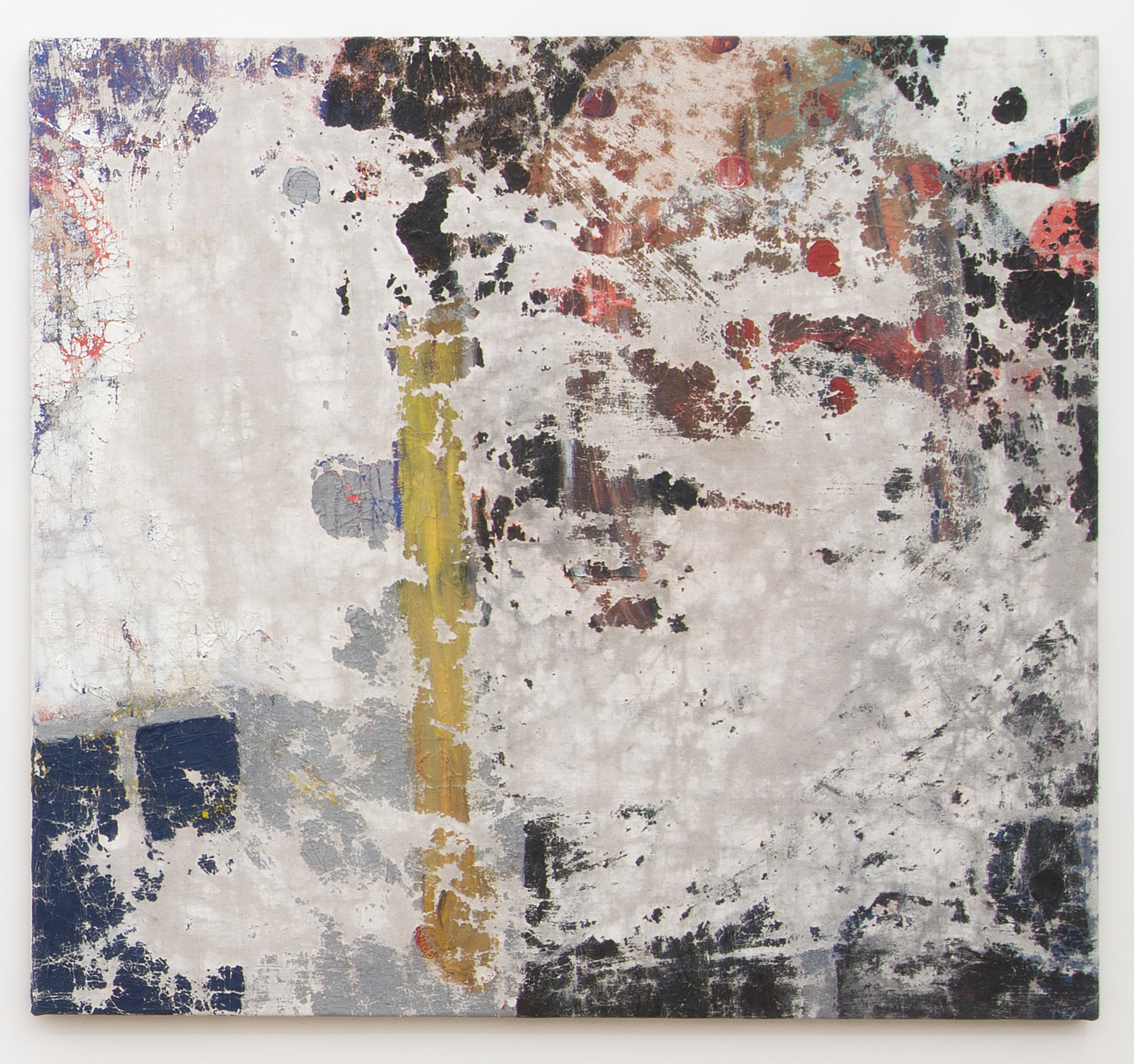Ajemian, Laundered Painting (44x41) I, 2014, painting on canvas, 44 x 41 in. 111.76 x 104.14 cm,2 photo by Bill Orcutt.png