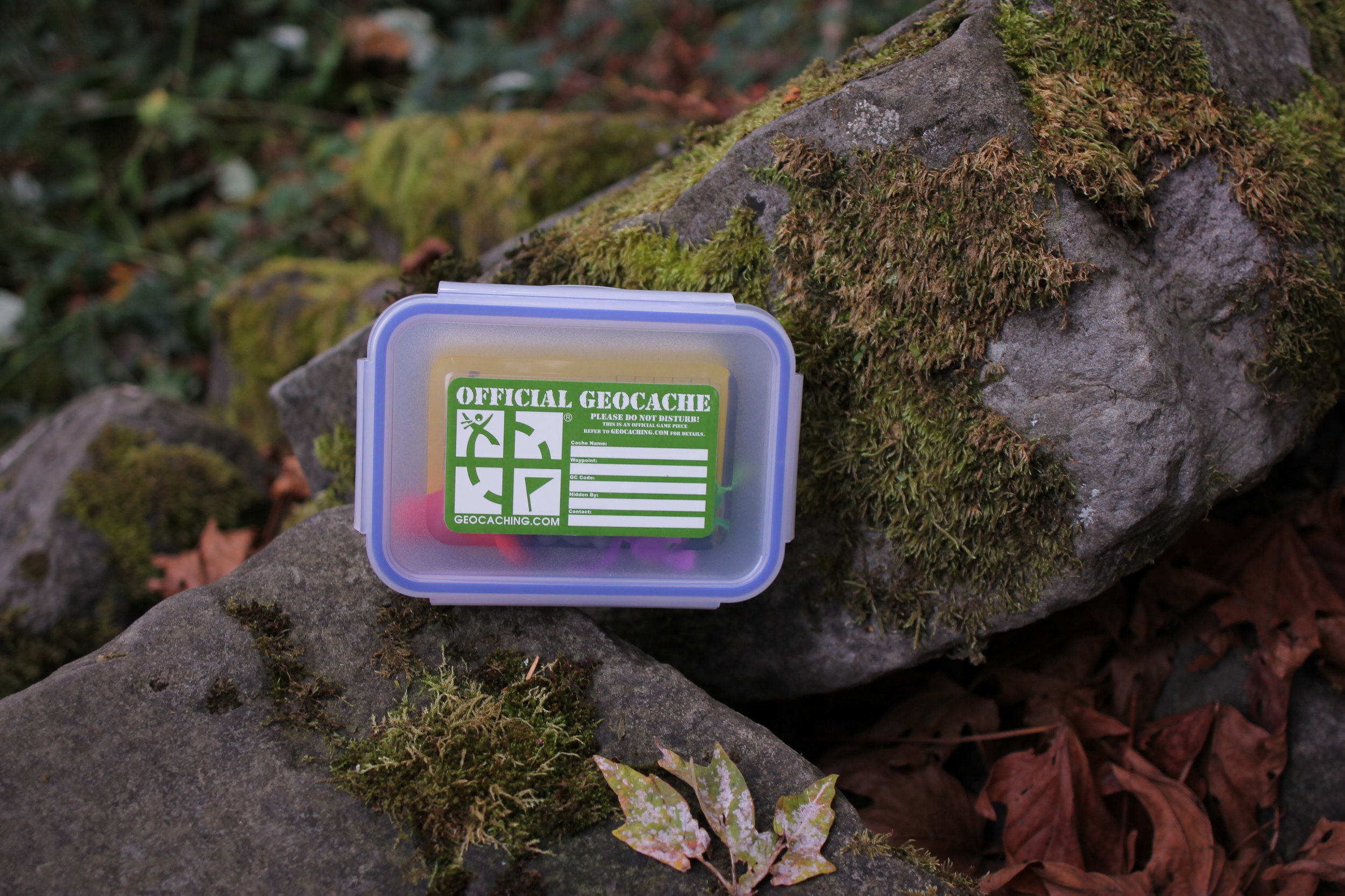 Geocachecontainer.JPG