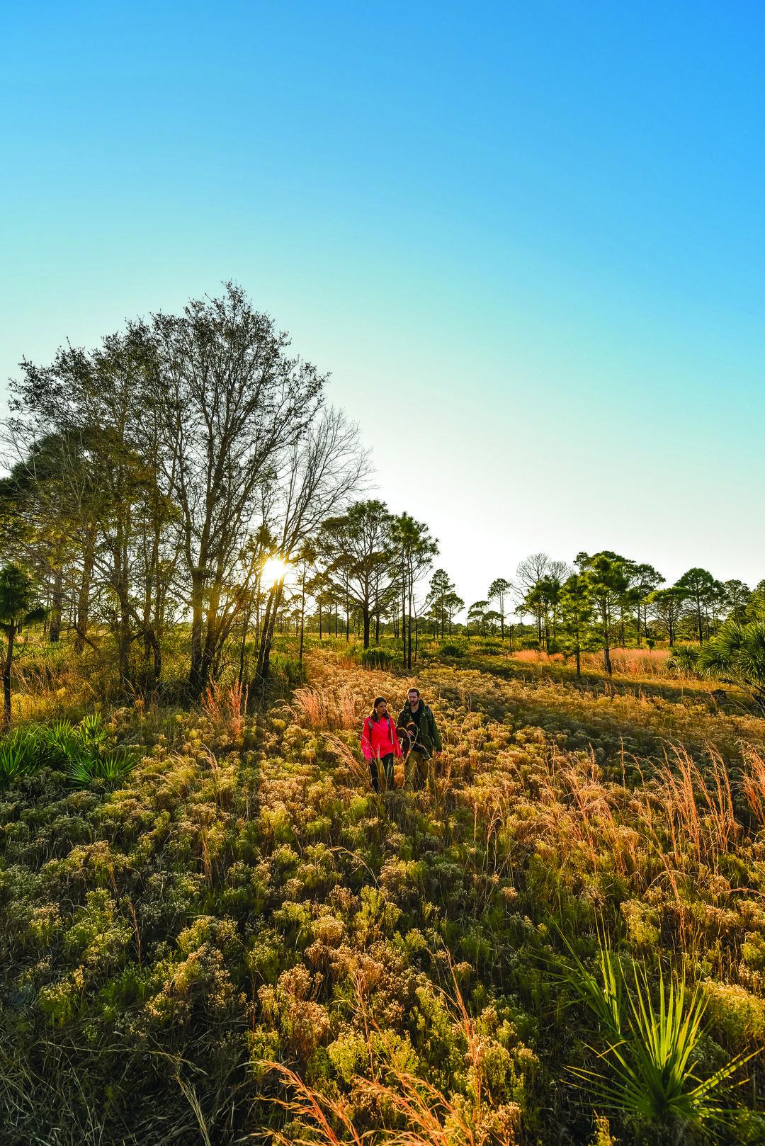 "Sarasota Magazine  //  Multiple GeoTours     "" 5 Hiking Adventures for Every Level"""