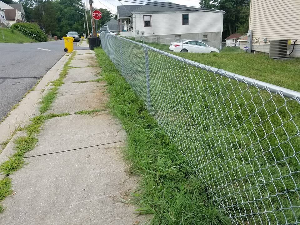 Chain Link Property Fence