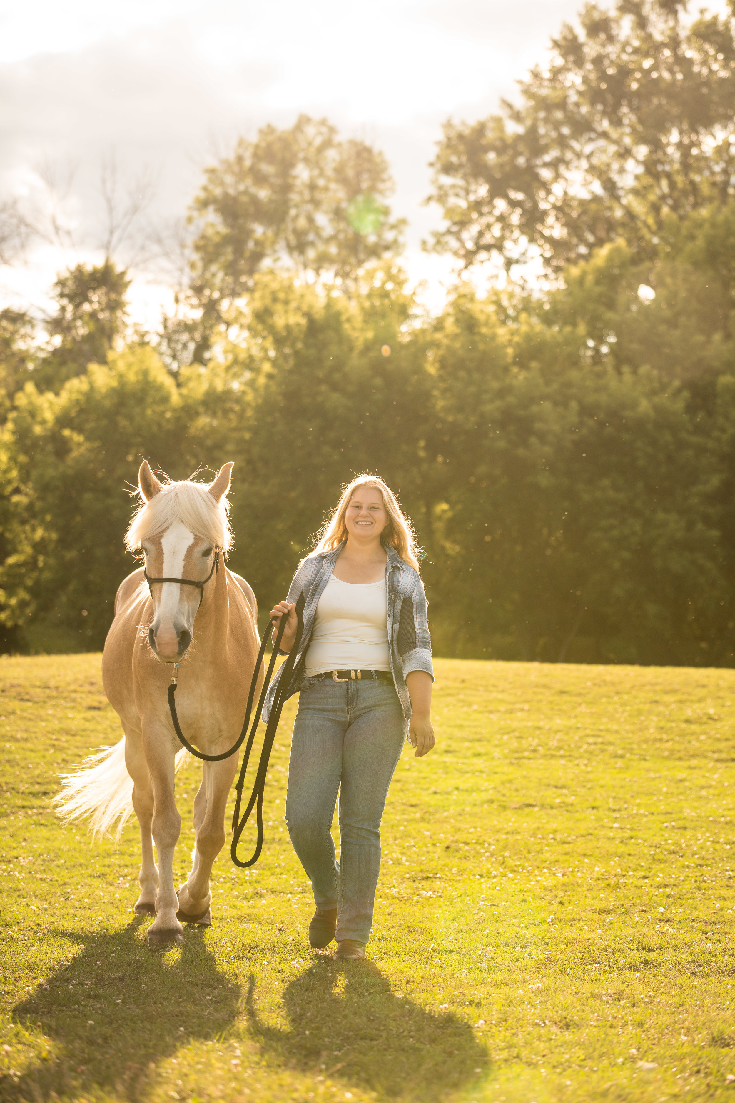 Girl with Haflinger at sunset