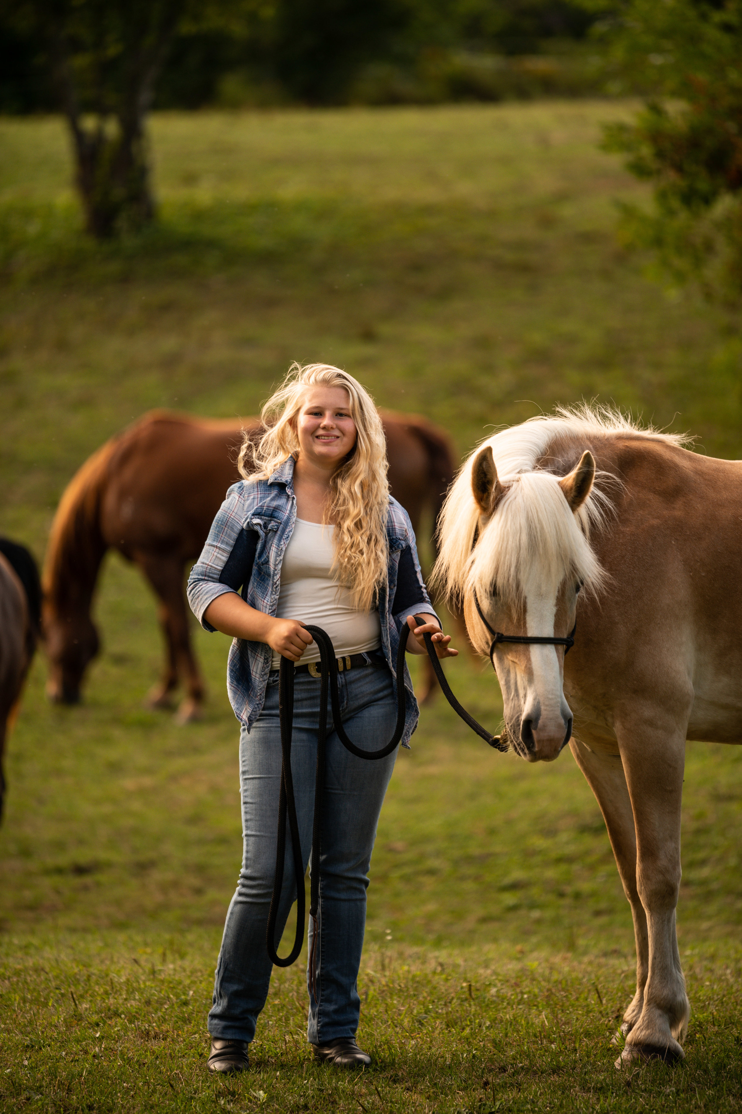 Girl posing with Haflinger mare