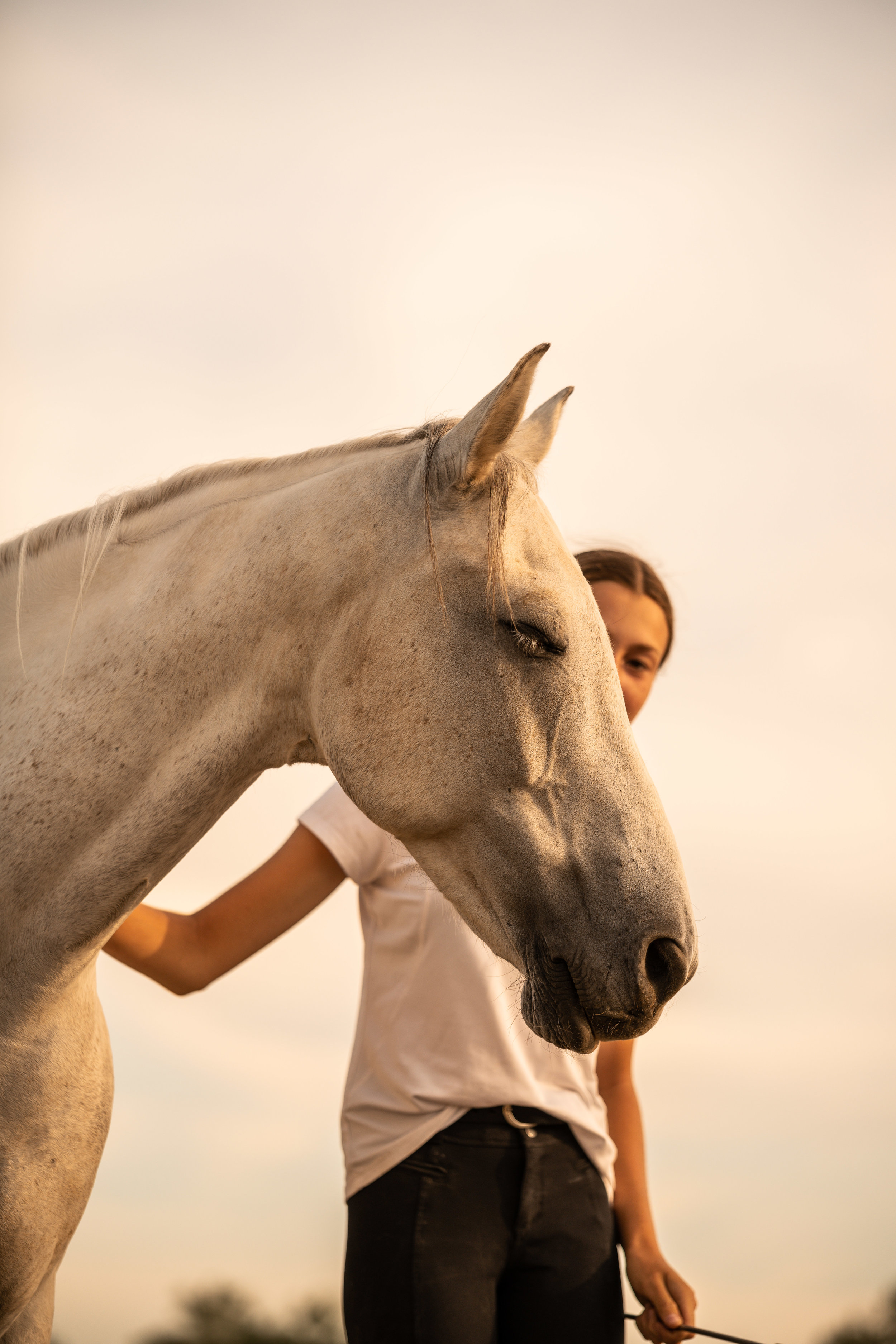 A quiet moment between a girl and her horse