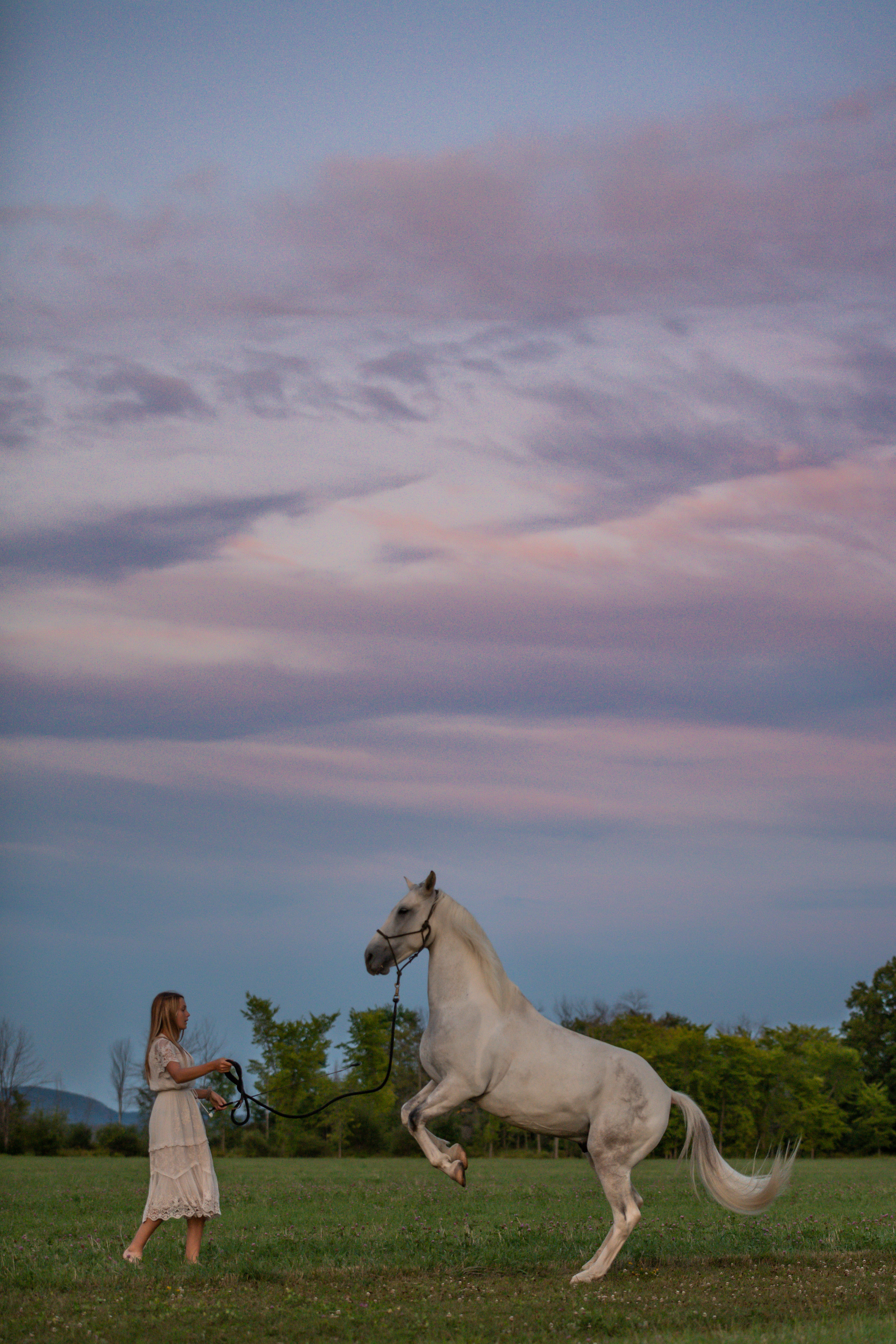 A horse and his girl rearing at sunset