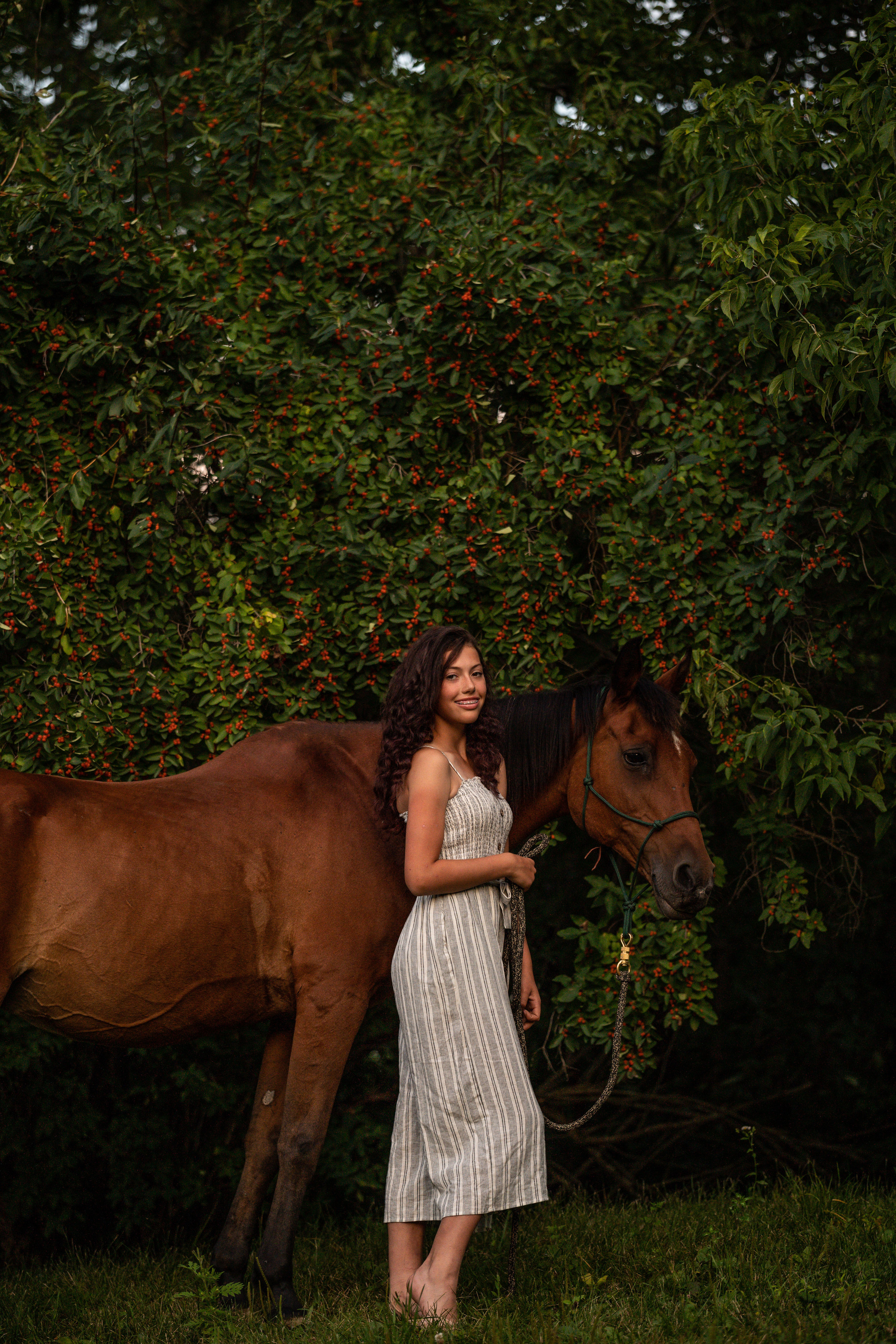 Bay mare lifestyle equestrian photography