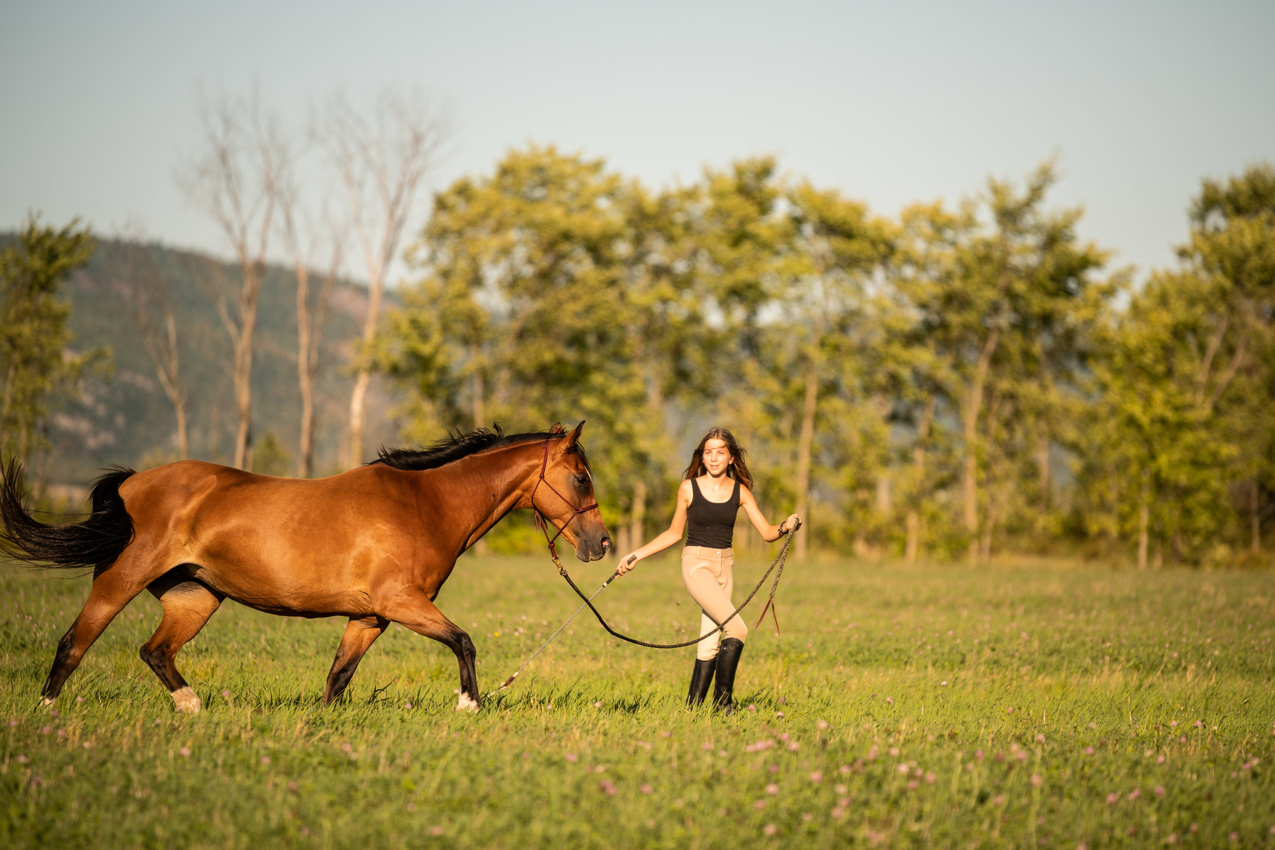 Bay mare and girl in a field