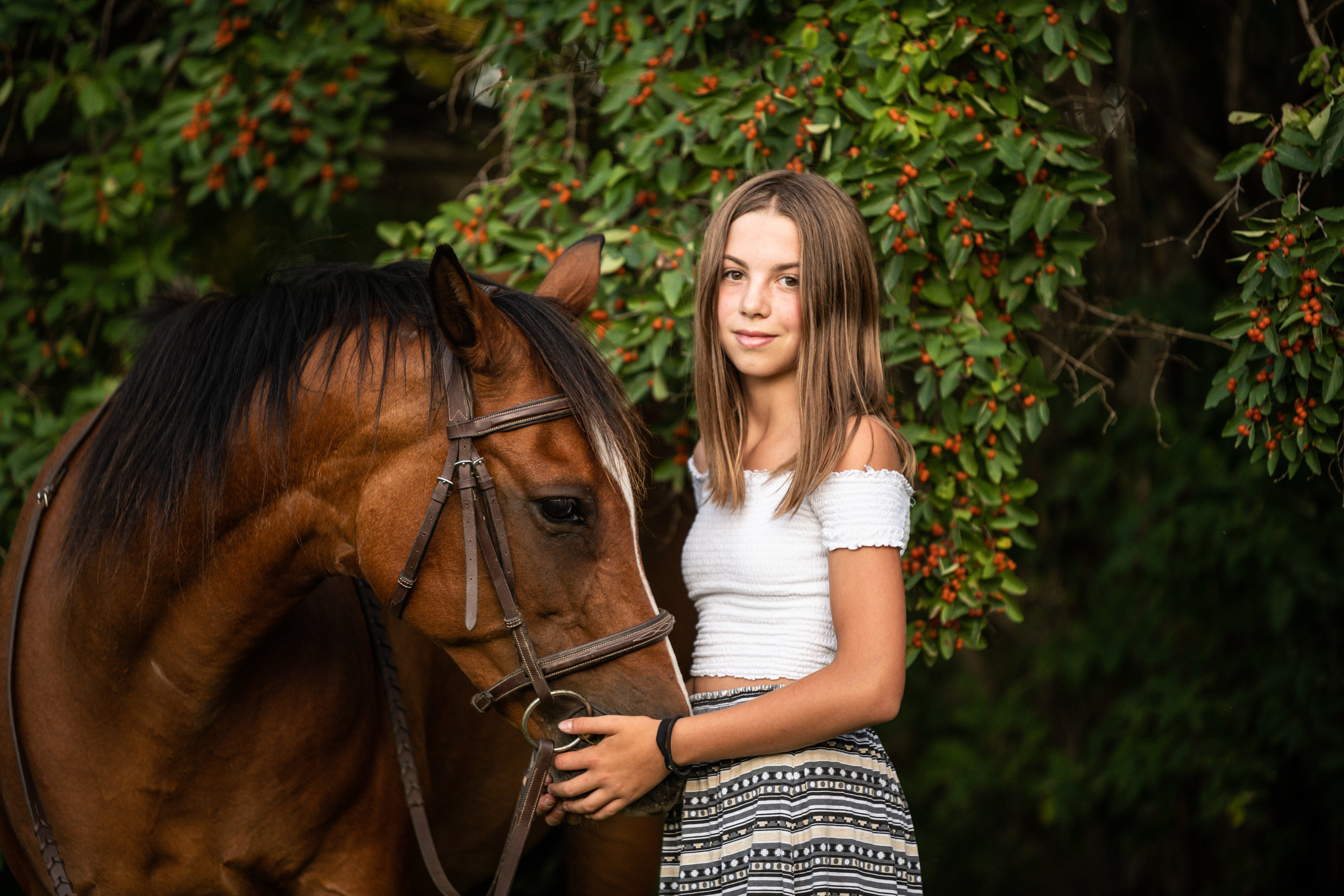sweet portrait of horse and girl