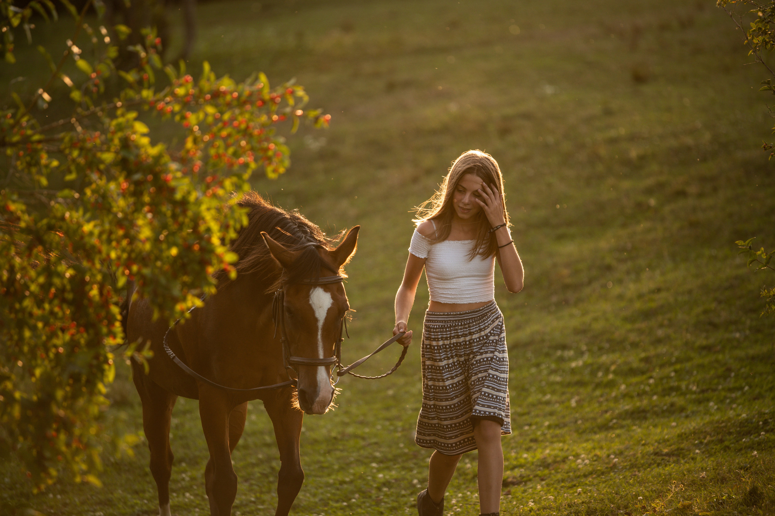 Horse and girl at sunset