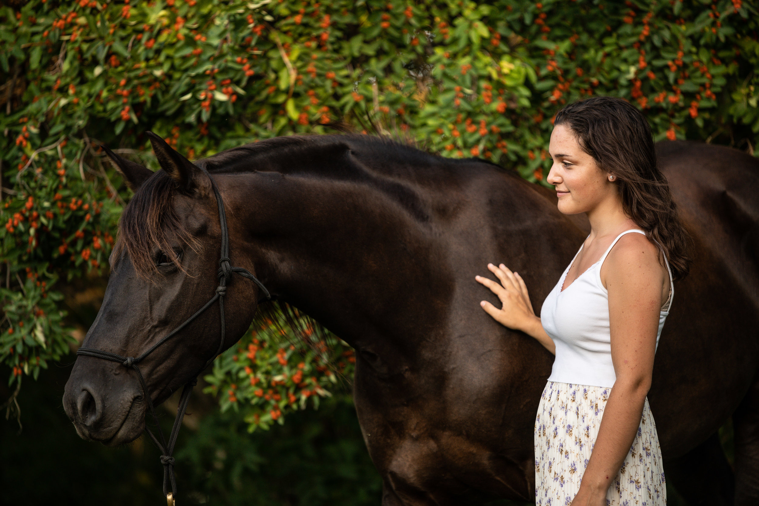 Canadian mare and girl equestrian portrait