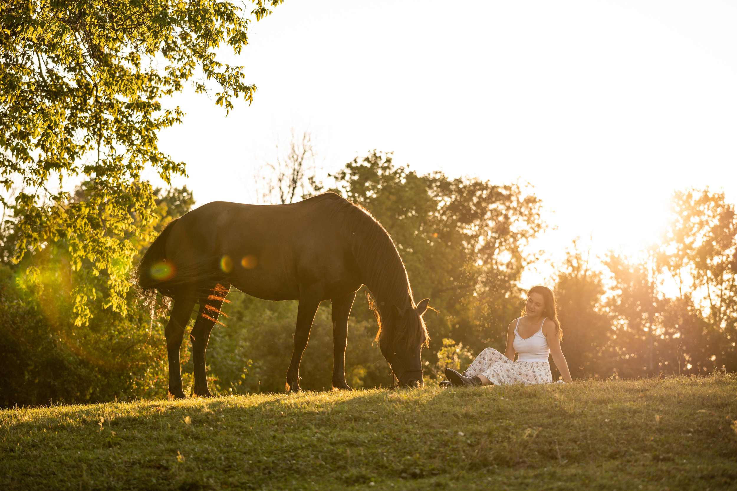 Canadian mare and girl equestrian portrait at sunset