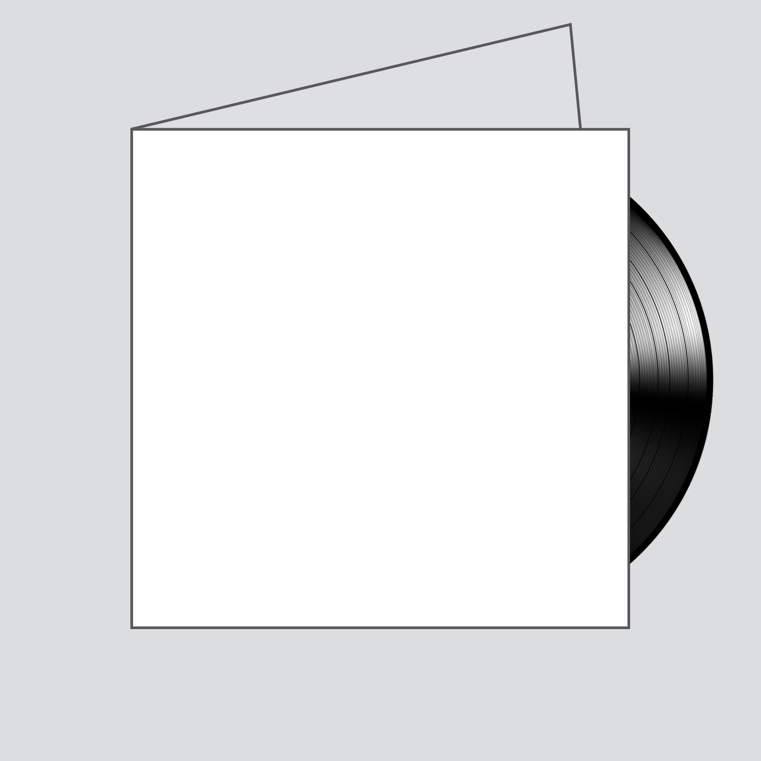 Gatefold jacket. Can hold up to two 12 inch vinyl records.