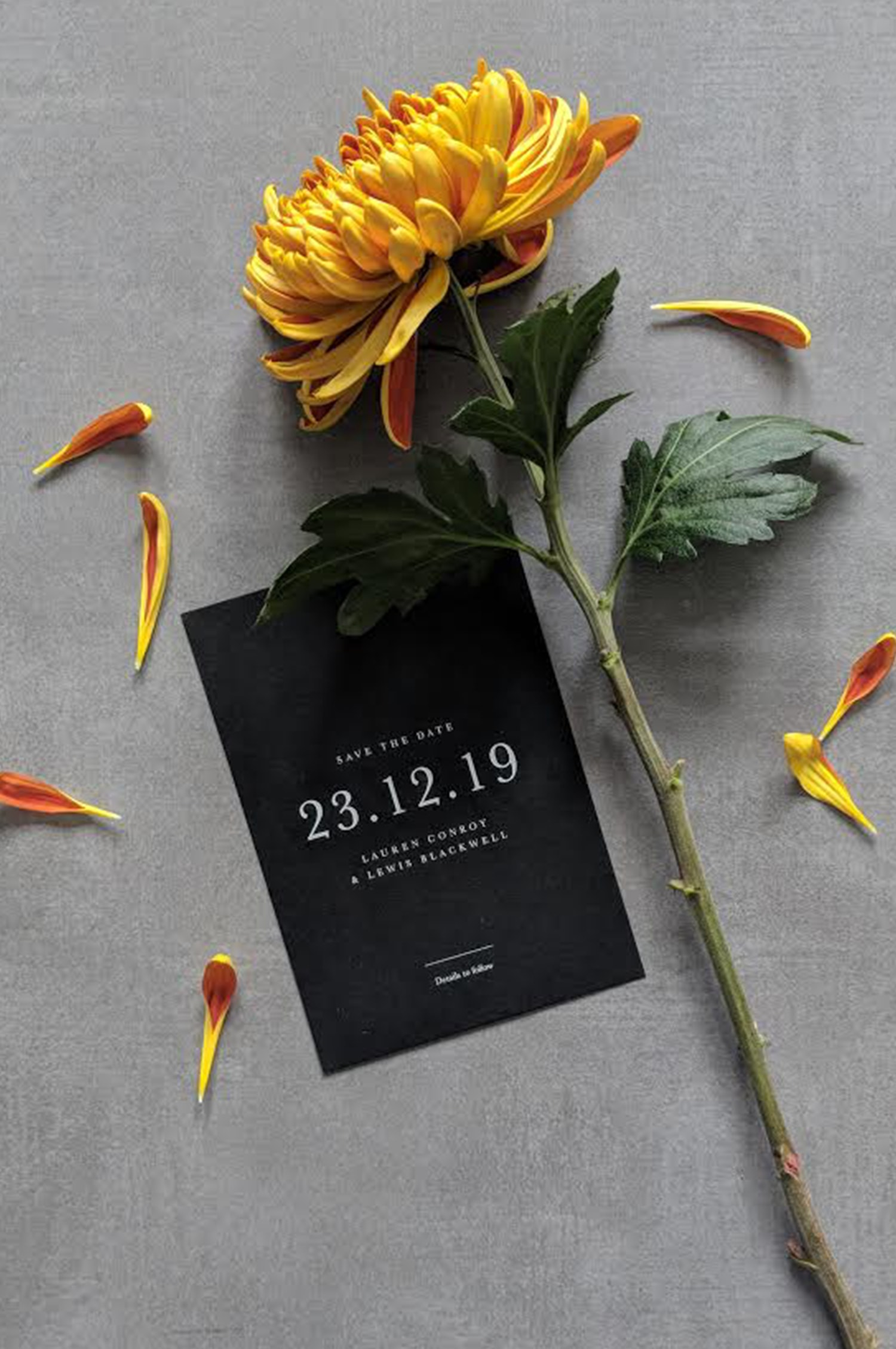 Save the Date Mini