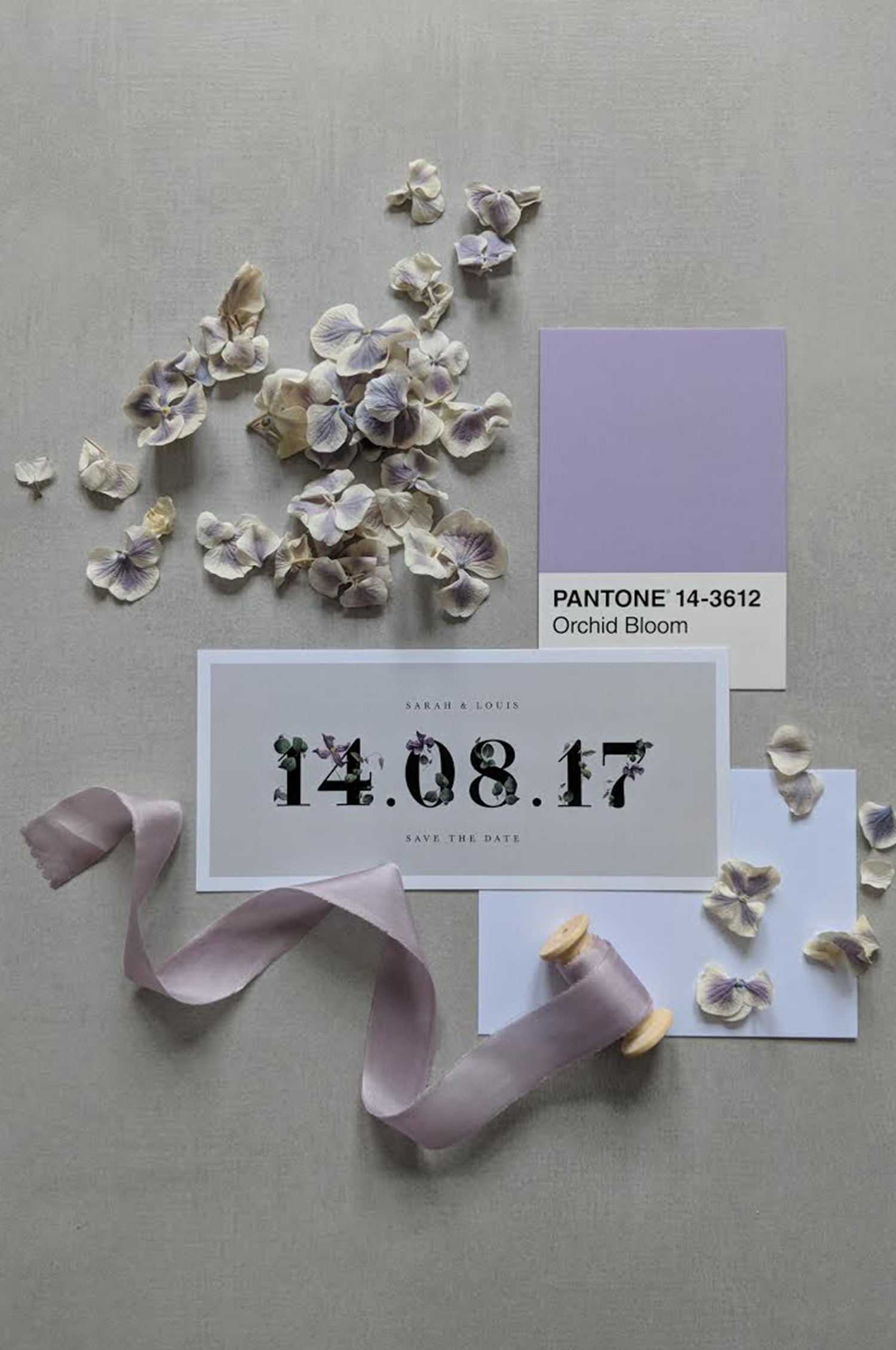 PurpleBloom-std-min.jpg