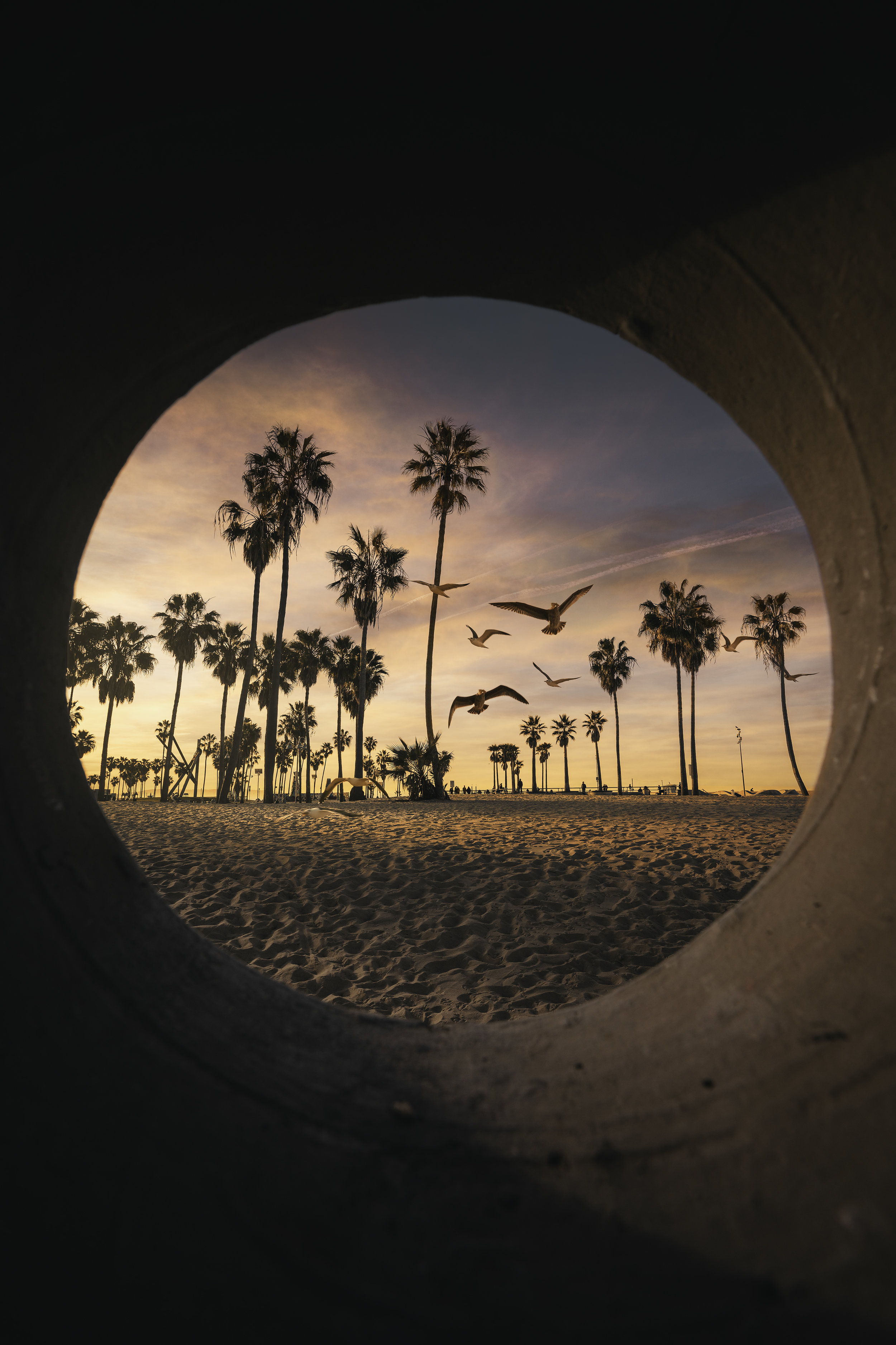 _DSC5815-Edit - Venice Hole v2.jpg