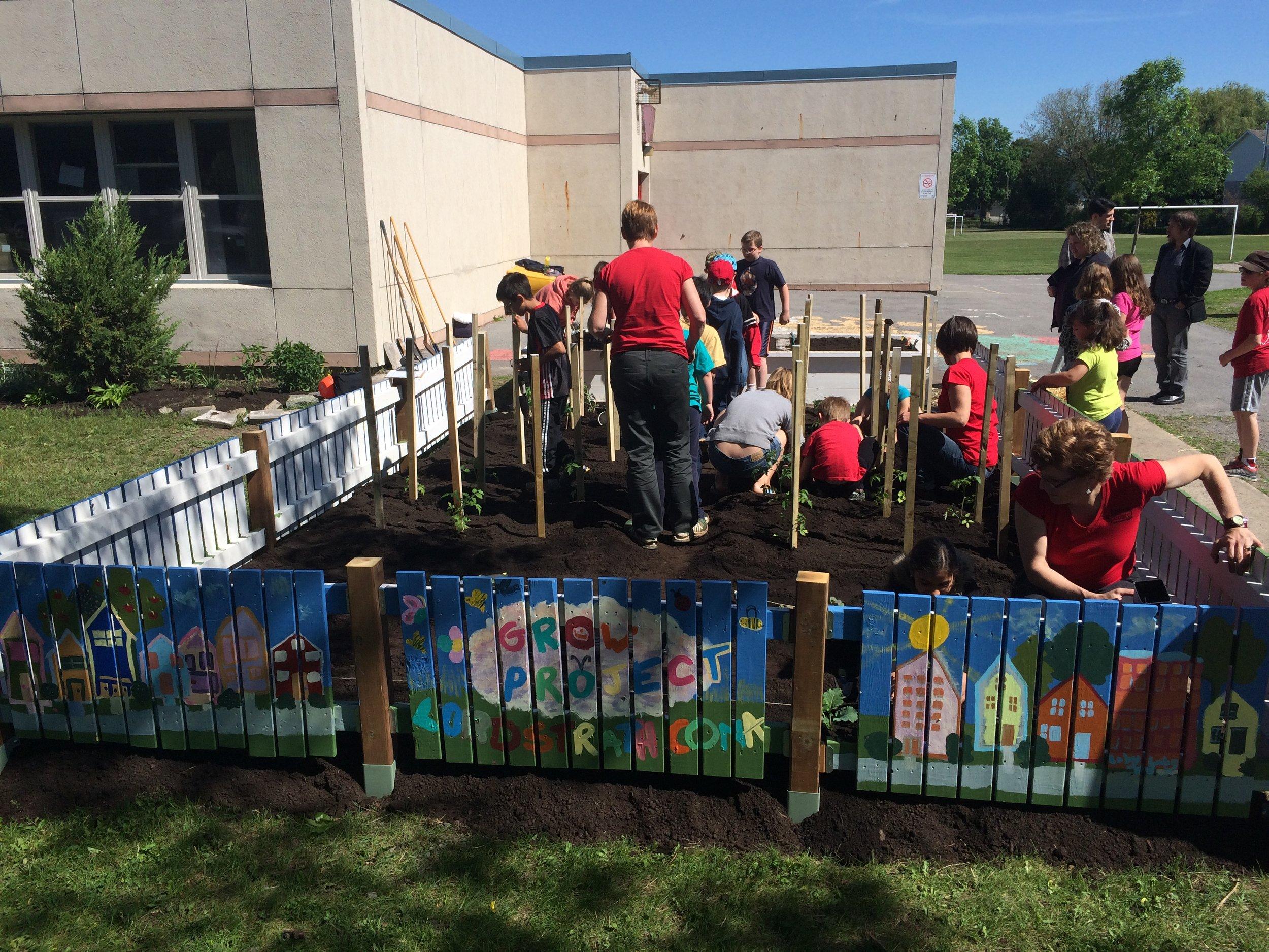 Launching a GROW garden at a public school in Kingston, ON