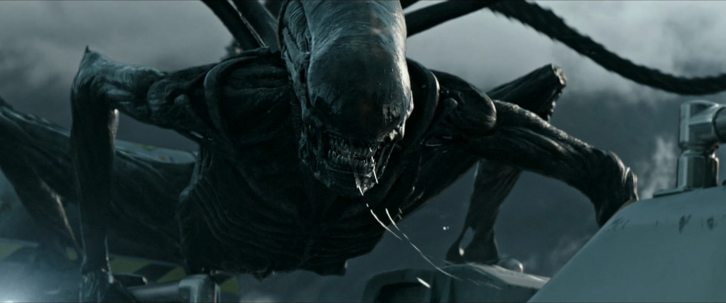 covenant-pic-2.png