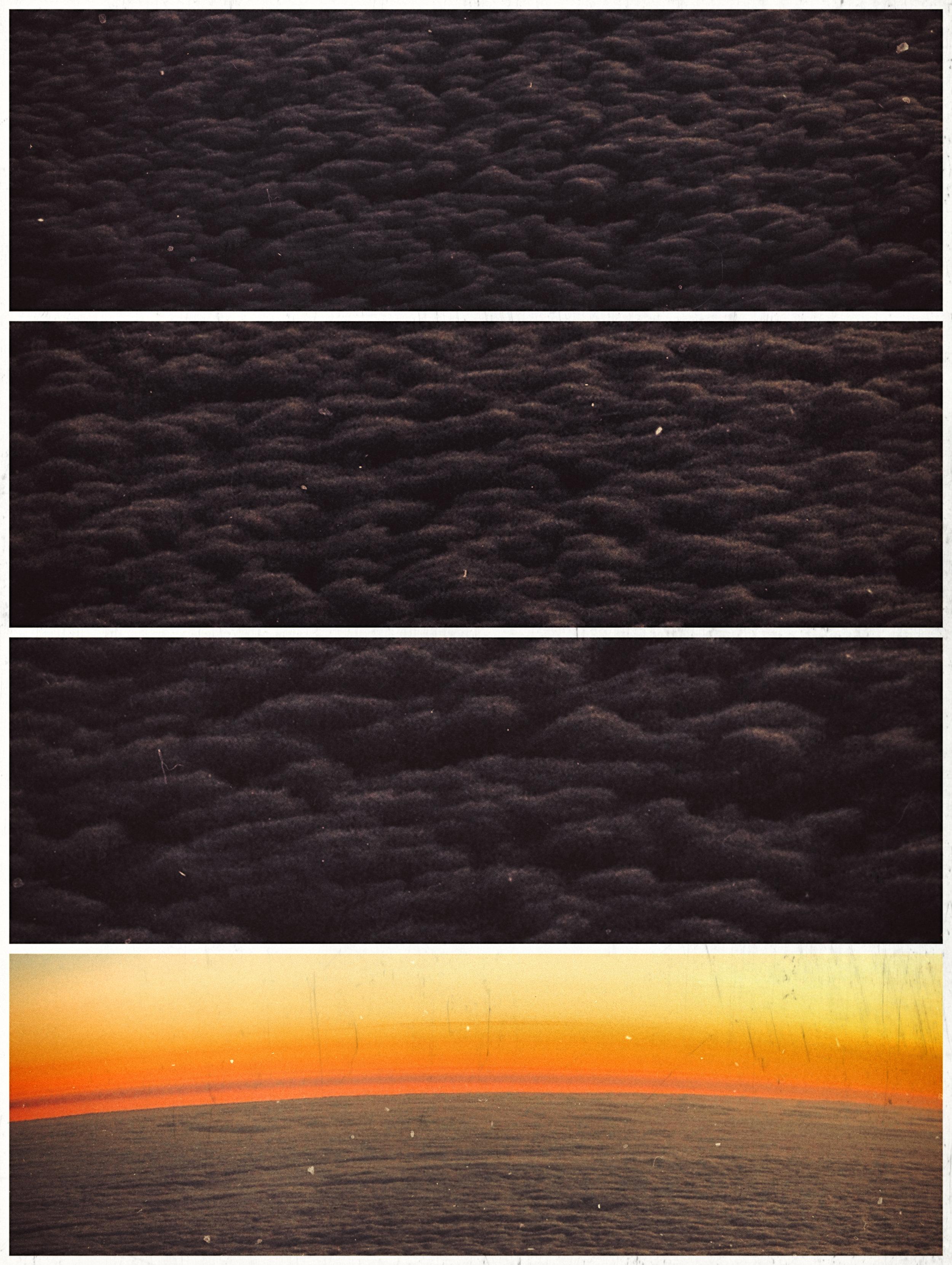 carpet of fluff.jpg