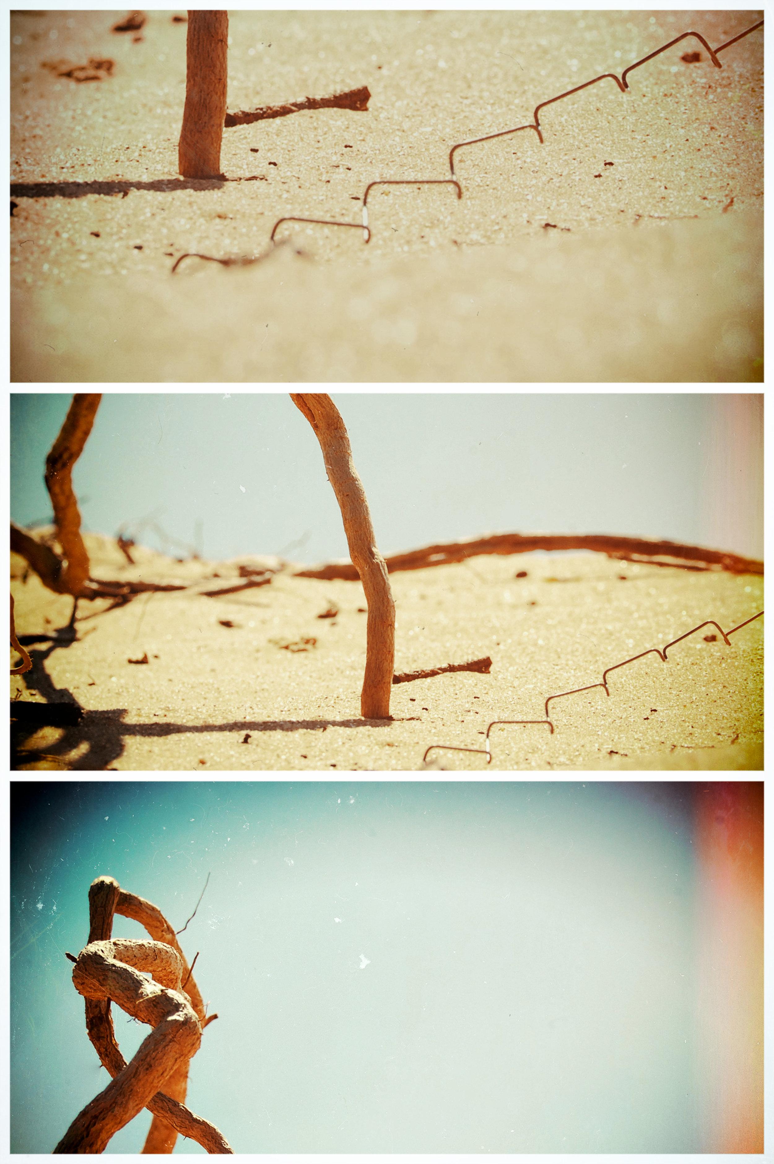 Copy of different roads.jpg
