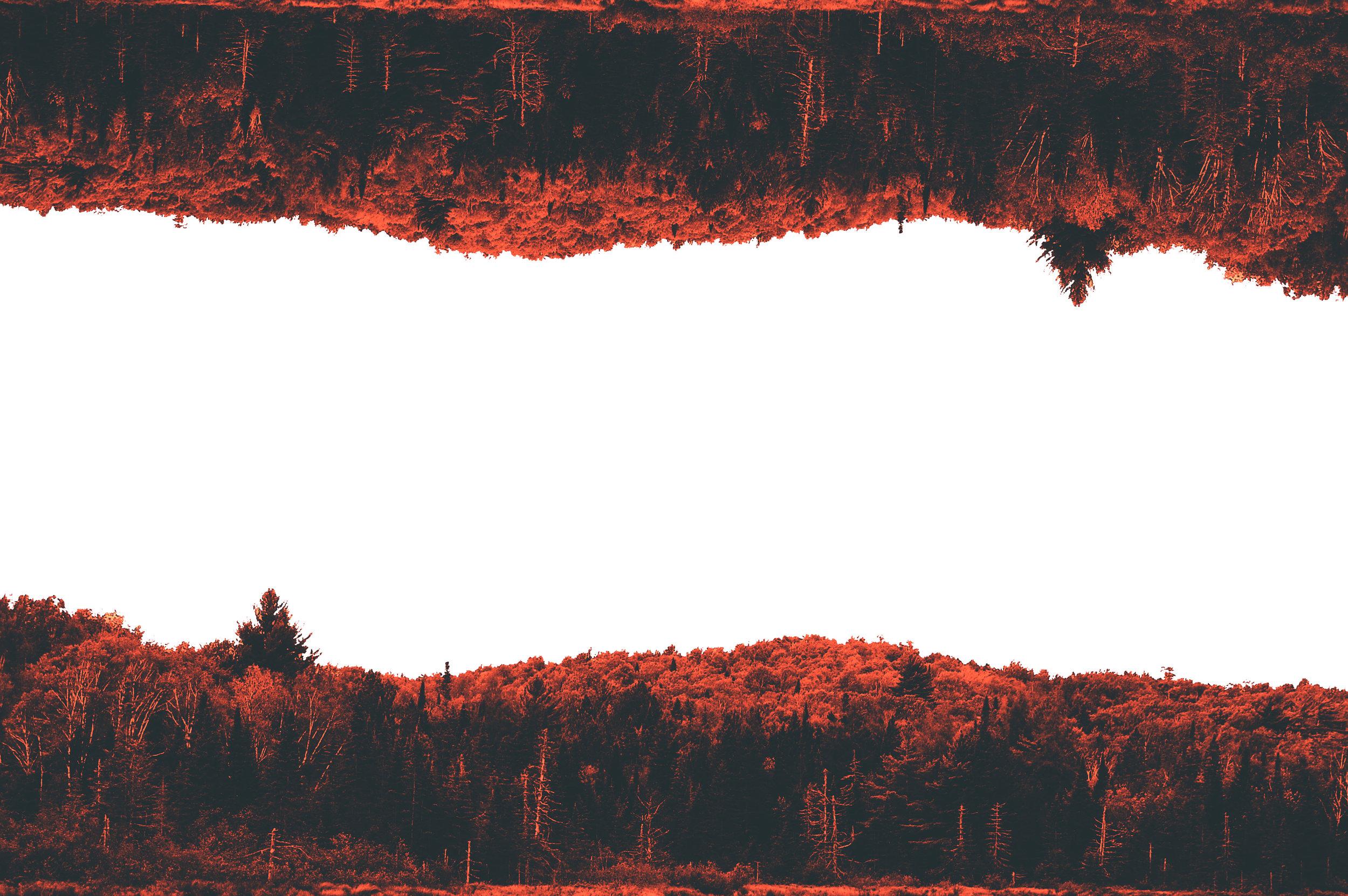 line of red.jpg