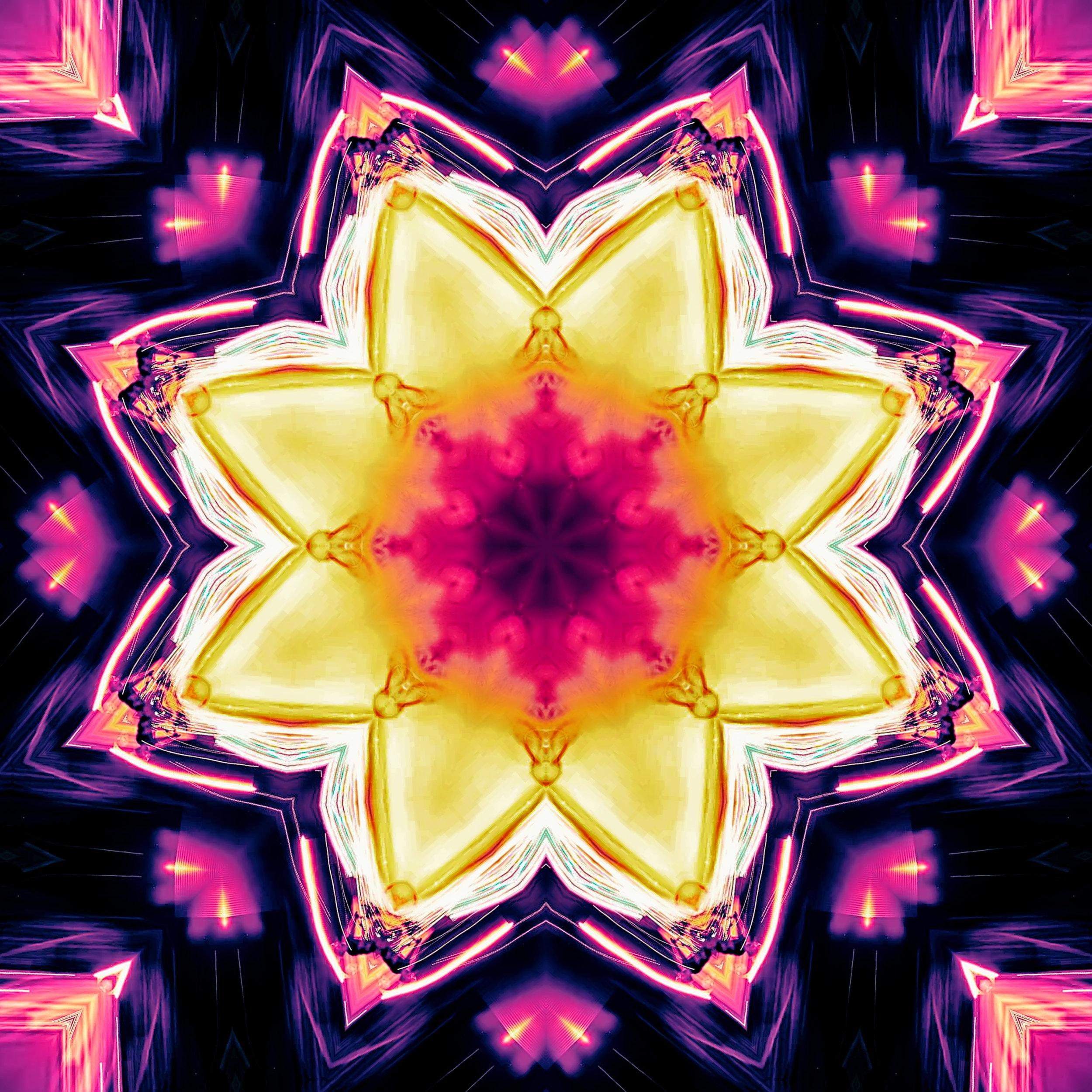 light flowers.jpg