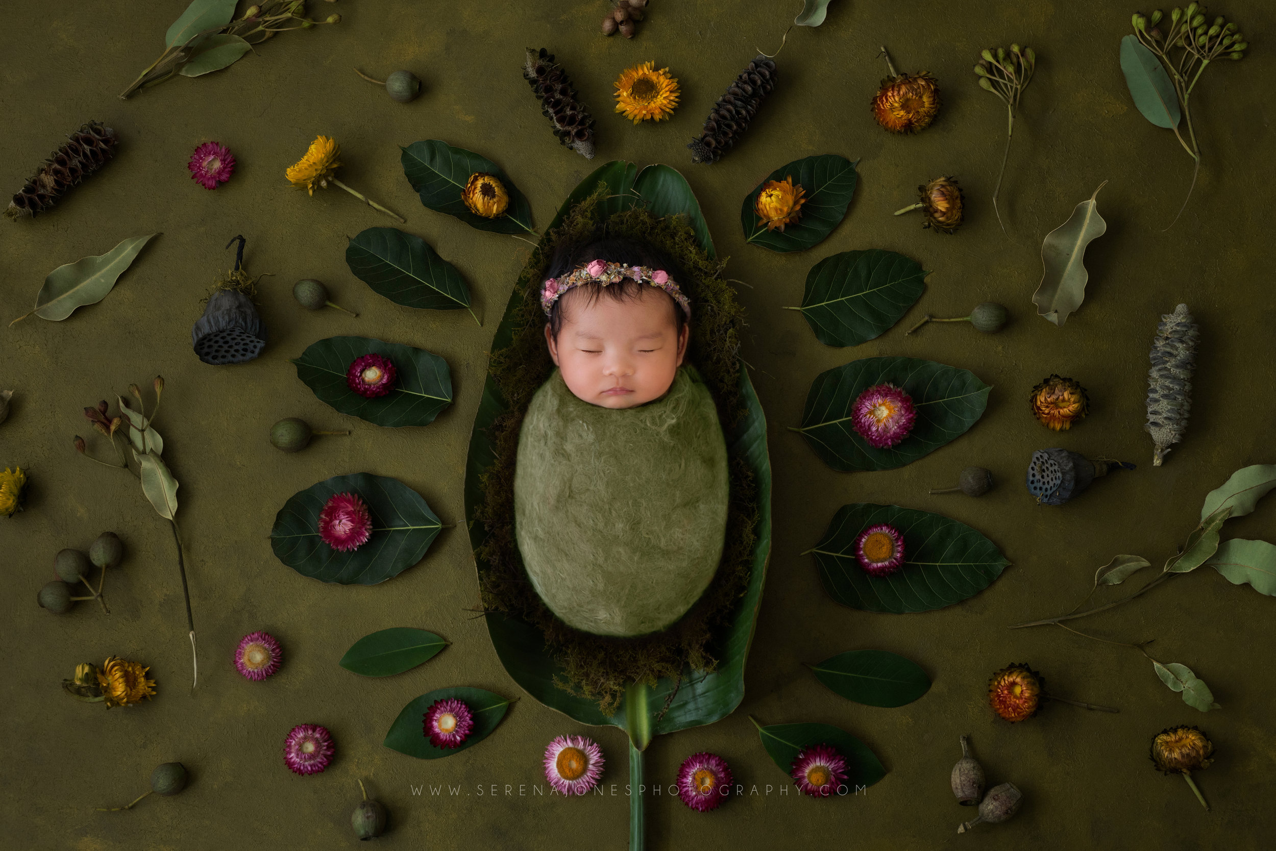 Serena Jones Photography - Tiara Joy Wu - 5.jpg