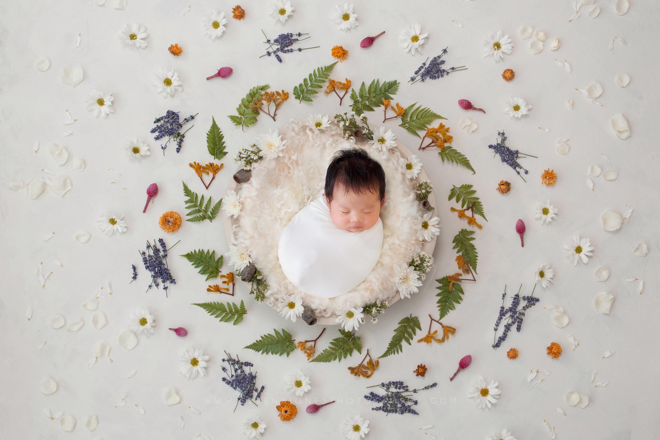 Serena Jones Photography - Tiara Joy Wu - 7 copy.jpg