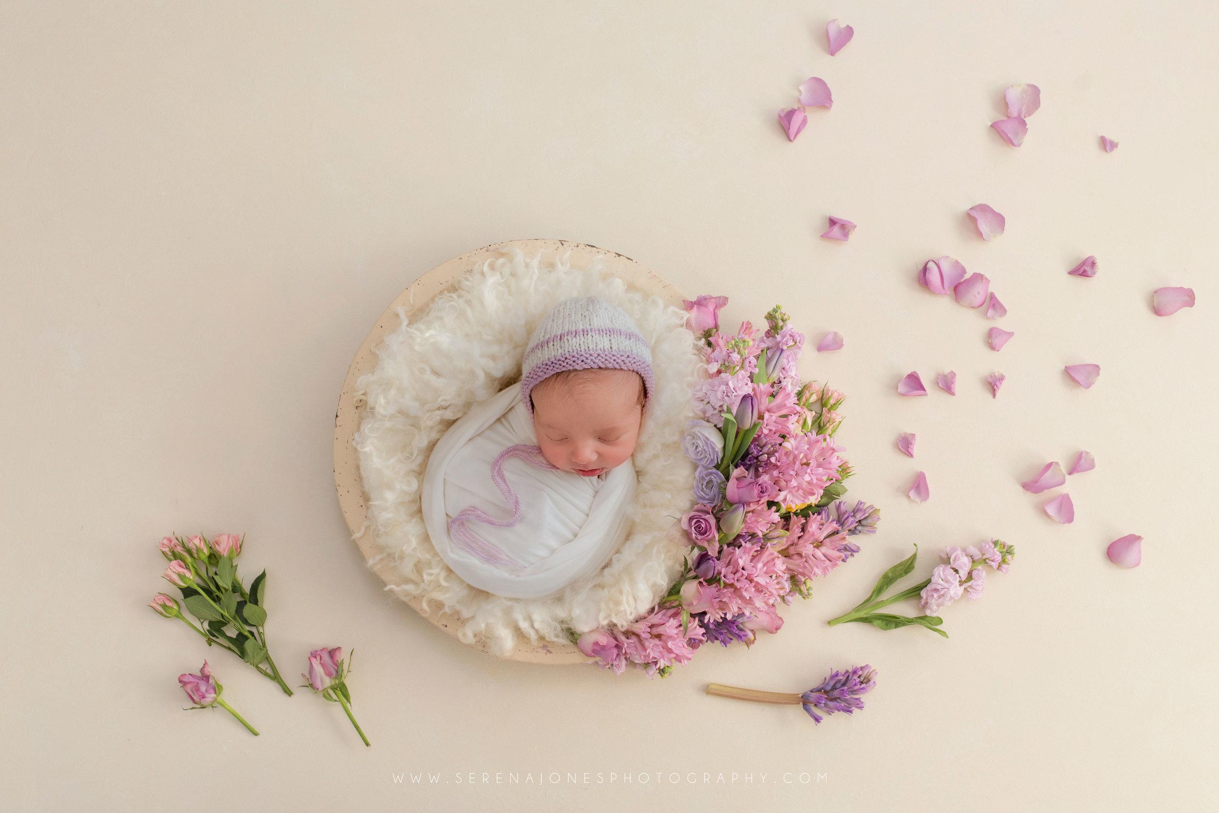 Serena Jones Photography - Alexandra Rose Nardo - 8.jpg