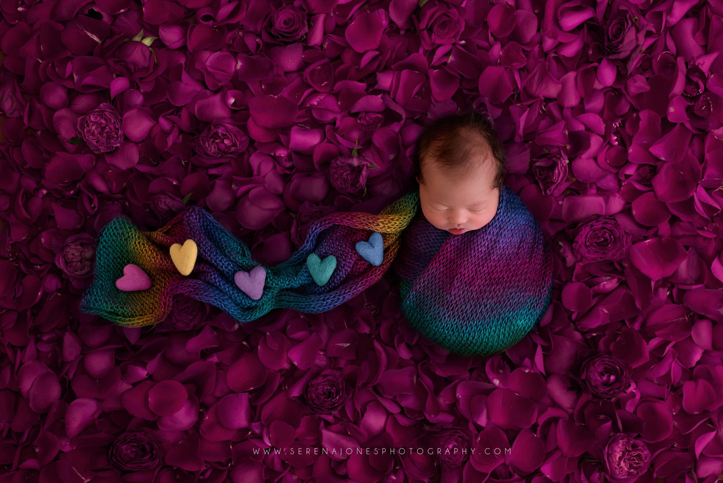 Serena Jones Photography - Sophia Gracielle Irawan - 21 FB.jpg